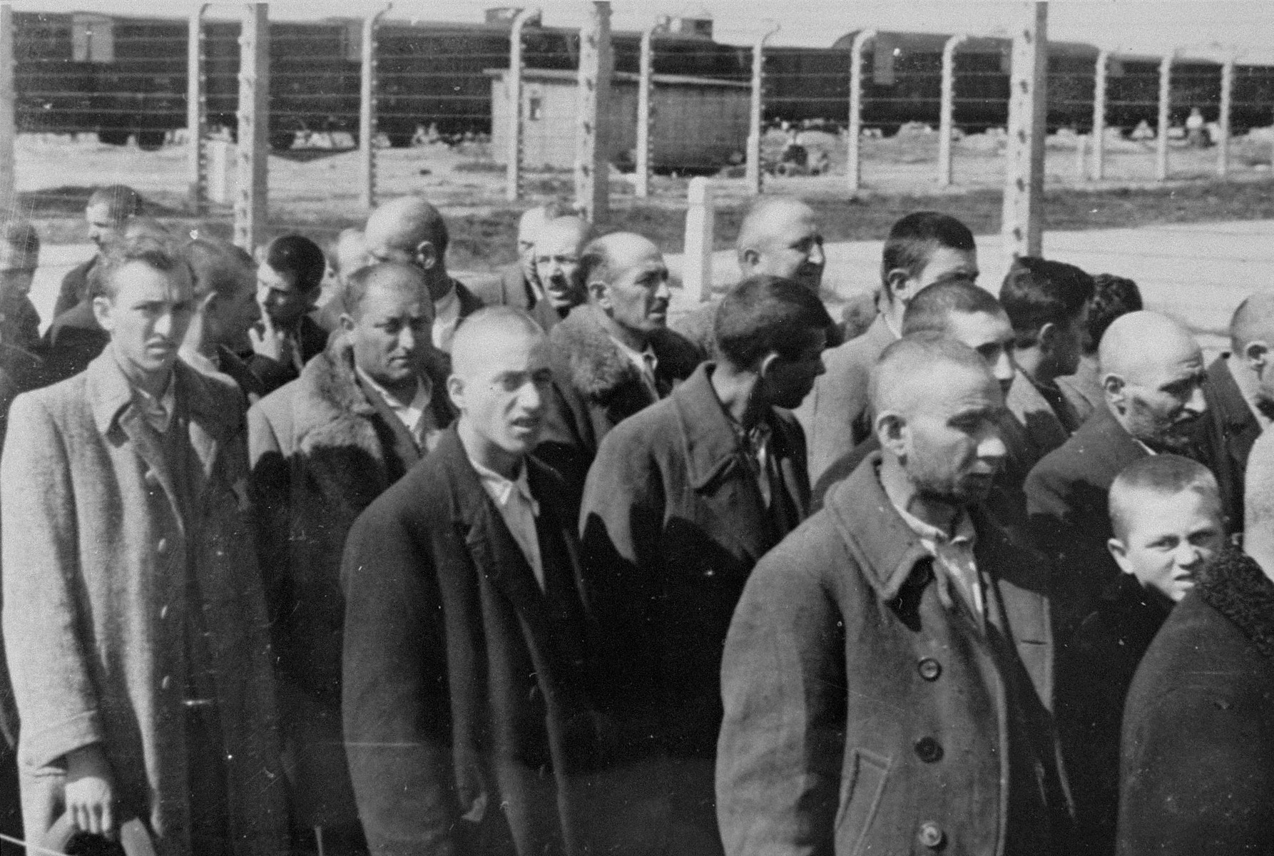 """Jews from Subcarpathian Rus who have been selected for forced labor at Auschwitz-Birkenau, are marched to another section of the camp.  The head of a young boy can be seen on the right. Normally a child this age would have been sent to die with his mother, but sometimes they would be taken as a """"pipl"""", or personal page, to one of the guards.  Some children were chosen for """"medical experiments"""" and a few were put in a labor brigade of their own."""