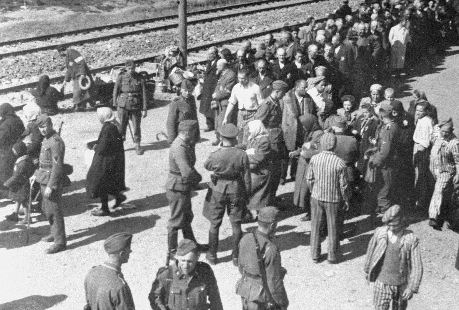Jews from Subcarpathian Rus undergo a selection on the ramp at Auschwitz-Birkenau.  Among those pictured are Hans Schorr and Heini Preiss.