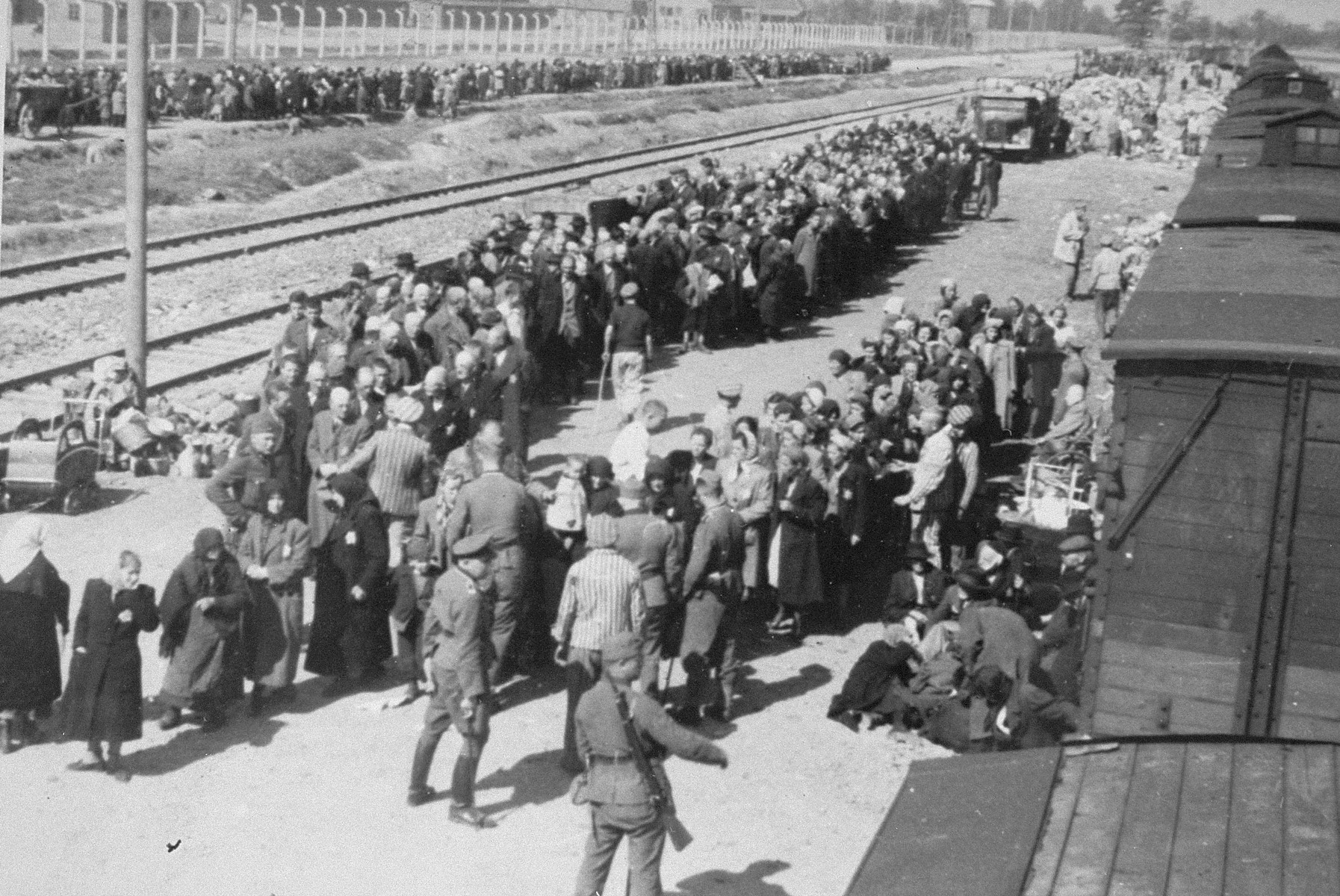 Jews from Subcarpathian Rus undergo a selection on the ramp at Auschwitz-Birkenau.  Pictured in front holding a riding crop may be either SS Unterscharfuehrer Wilhelm Emmerich or SS Haupsturmfuehrer Georg Hoecker assisted by the Jewish prisoner Hans Schorr.  Also pictured are Norbert Lopper and Irena Fogel (later Weiss) is pictured in the front second from left, facing forward. Pictured in the front right is Erszebet Klein Roth, her mother and aunt.  Additional individuals have been identified in the center of the photograph: Hinda Lazarowitz, Pepe Hershkowitz (Apperman), and Gittel (Gail) Hershkowitz (Brandwein).