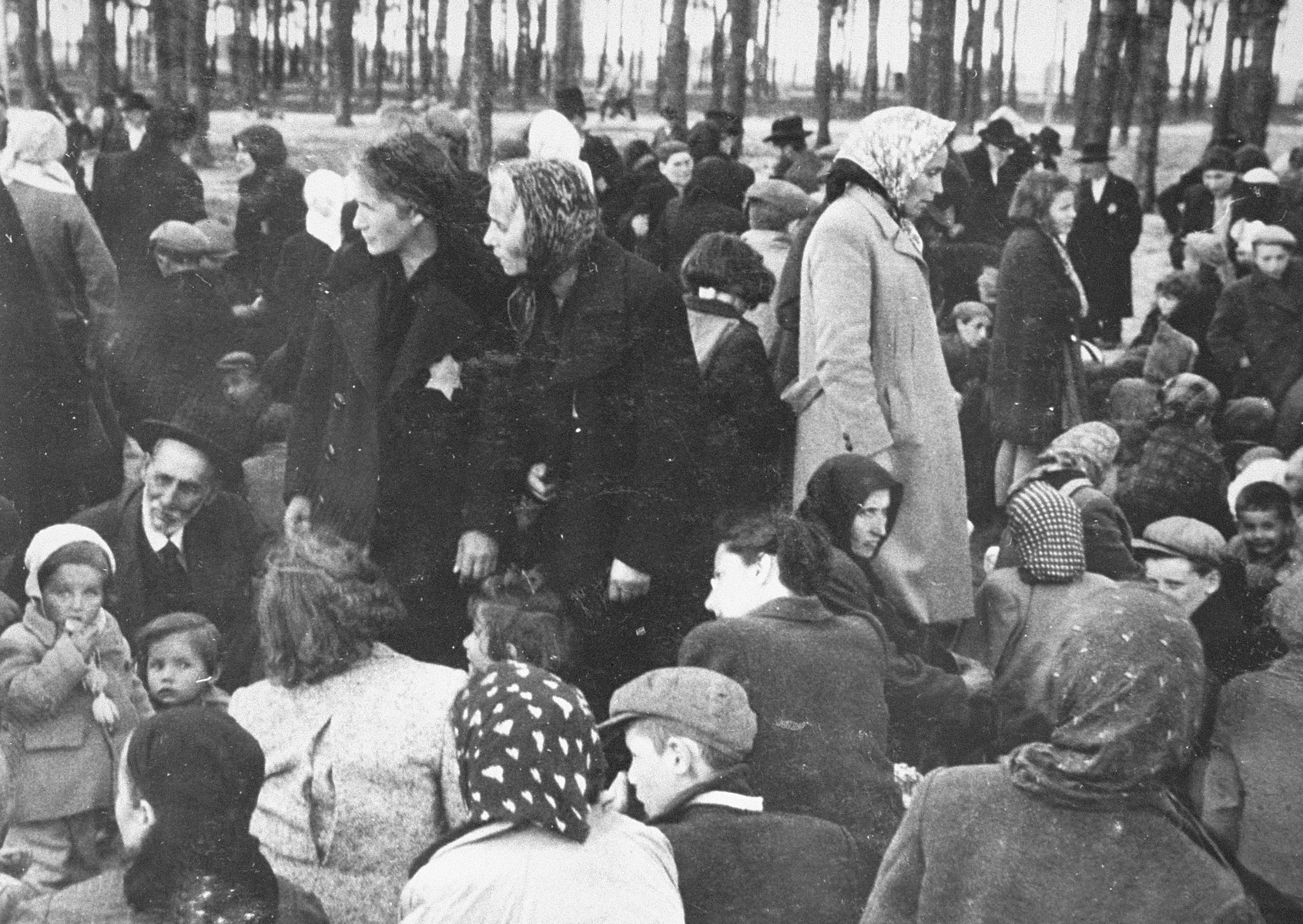Jews from Subcarpathian Rus who have been selected for death at Auschwitz-Birkenau, wait in a clearing near a grove of trees before being led to the gas chambers.