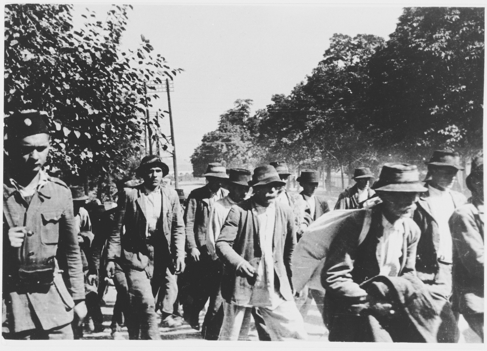 Serbs and Gypsies who have been rounded up for deportation are marched to the Jasenovac concentration camp under Ustasa guard.