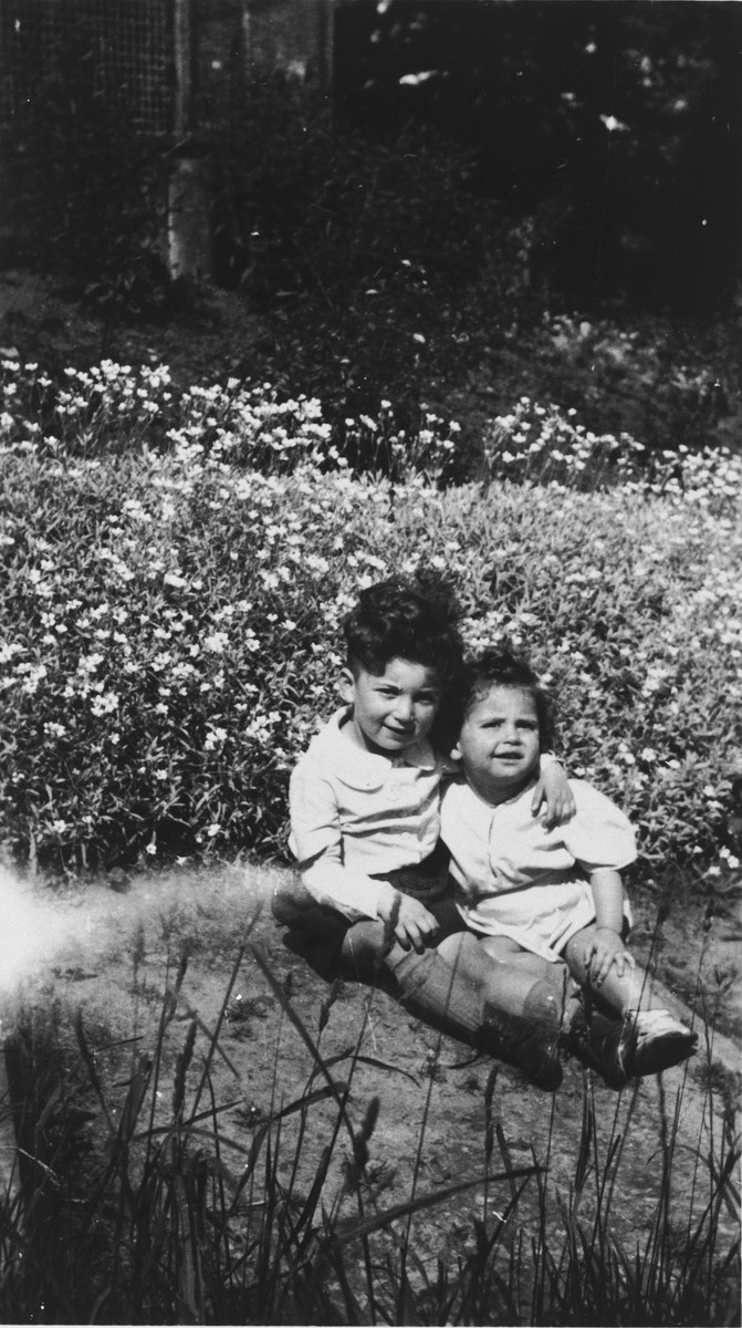 Two Belgian Jewish brothers, Oscar and Emile Wasyng, pose outside while  in hiding in the Ardennes.