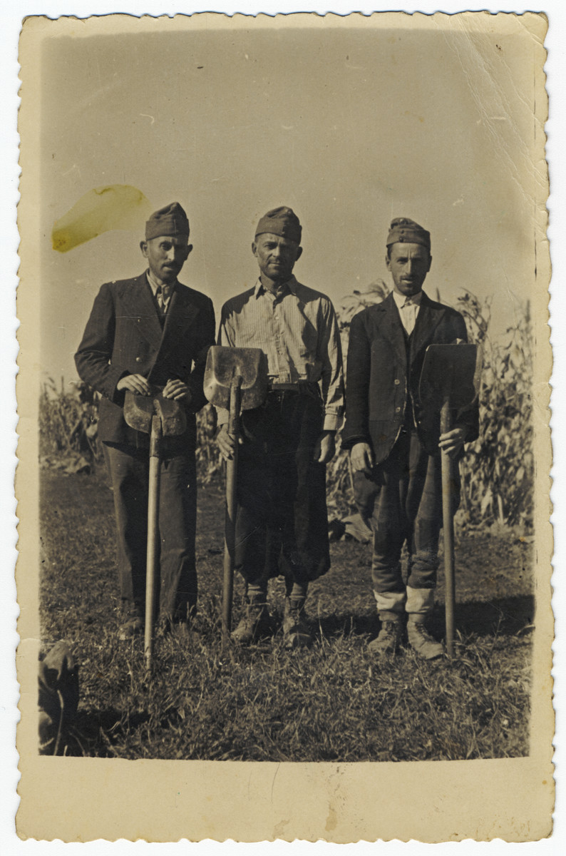 Three Hungarian Jewish men pose with shovels in a Hungarian labor battalion.  Among those pictured is Chaskel Ehrenreich, uncle of the donor.  He and all of his family perished in the Holocaust.