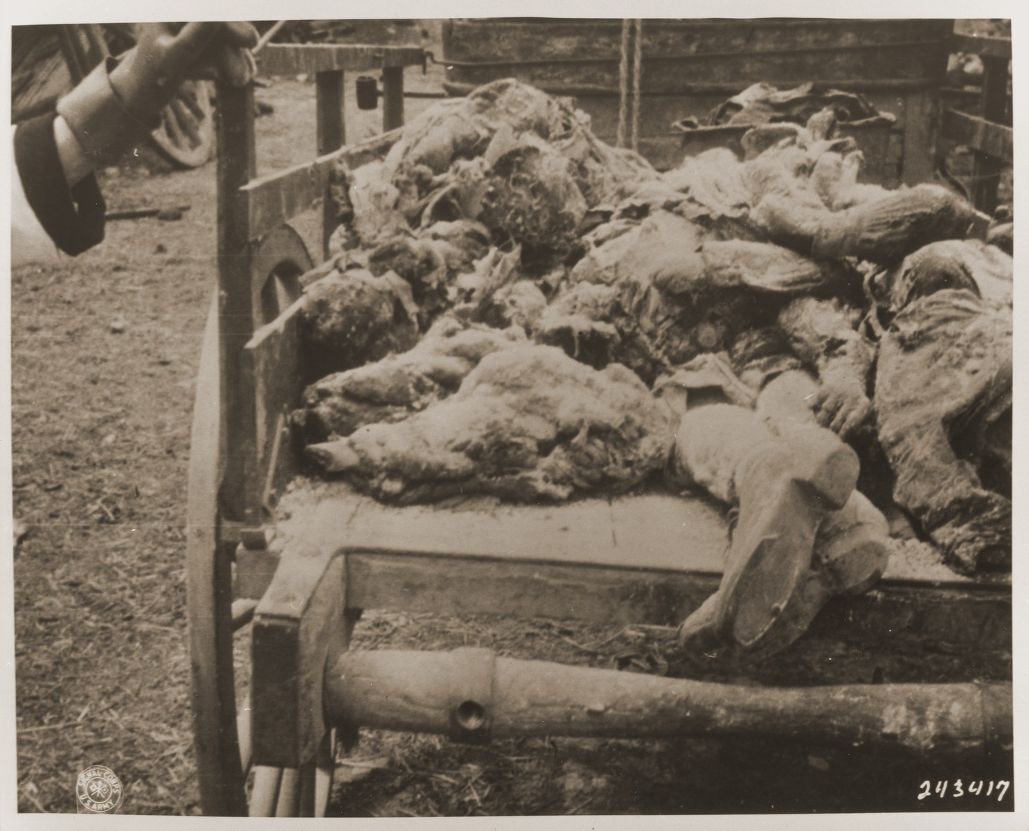 A wagon bearing the remains of civilians exhumed from a mass grave in Oradour.  The victims were killed by the SS in Oradour on June 10, 1944.