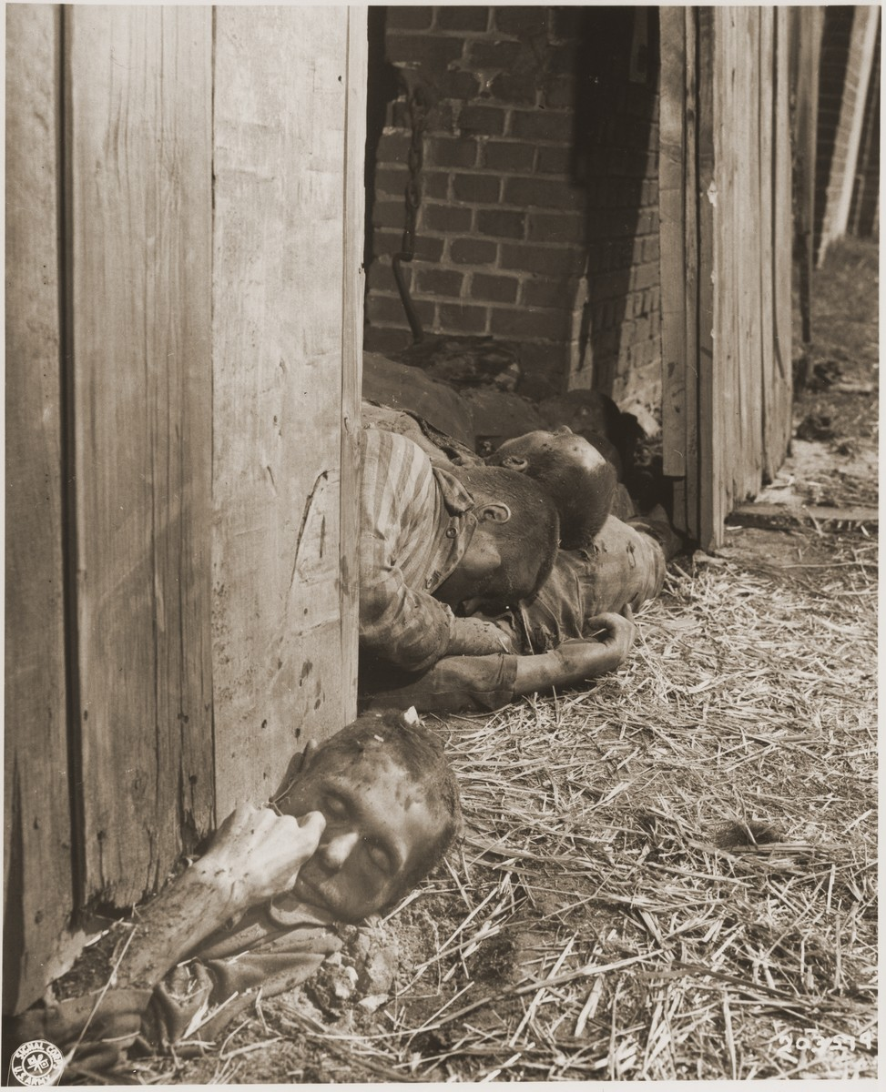 The corpses of prisoners shot by the SS lie in the doorway of a barn just outside of Gardelegen.