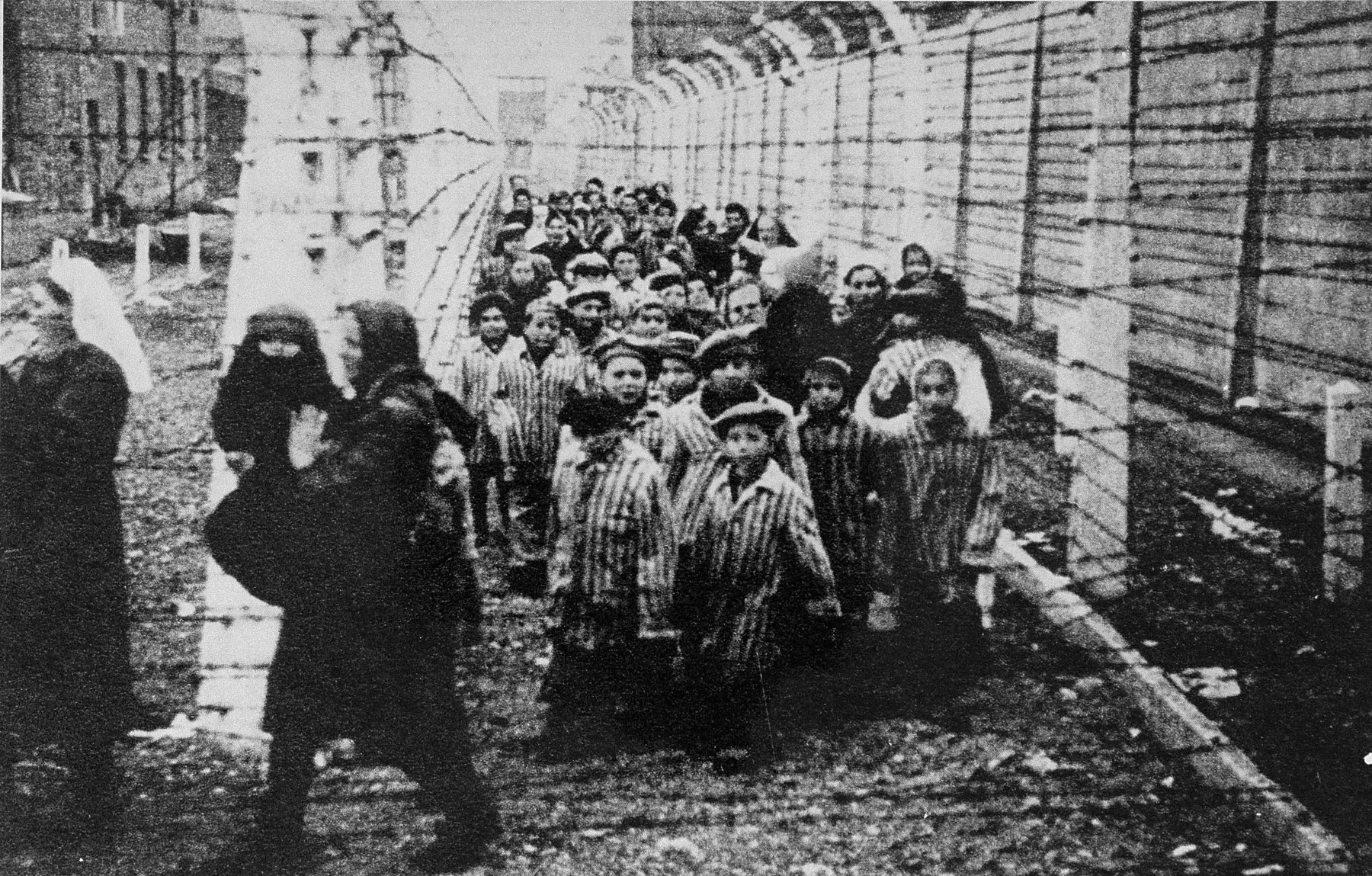 Wearing adult-size prisoner jackets, child survivors of Auschwitz are led by relief workers and Soviet soldiers through a narrow passage between two barbed-wire fences.  STILL PHOTOGRAPH FROM THE SOVIET FILM of the liberation of Auschwitz, taken by the film unit of the First Ukrainian Front.