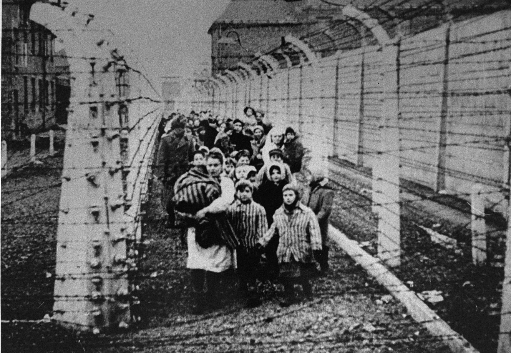 Wearing adult-size prisoner jackets, child survivors of Auschwitz are led by relief workers and Soviet soldiers through a narrow passage between two barbed-wire fences.  Eva Mozes is standing next to the nurse.  Holding her hand is her twin sister Miriam. Behind them in white pointed hats are Judy and Lea Csenghery,  STILL PHOTOGRAPH FROM THE SOVIET FILM of the liberation of Auschwitz, taken by the film unit of the First Ukrainian Front.