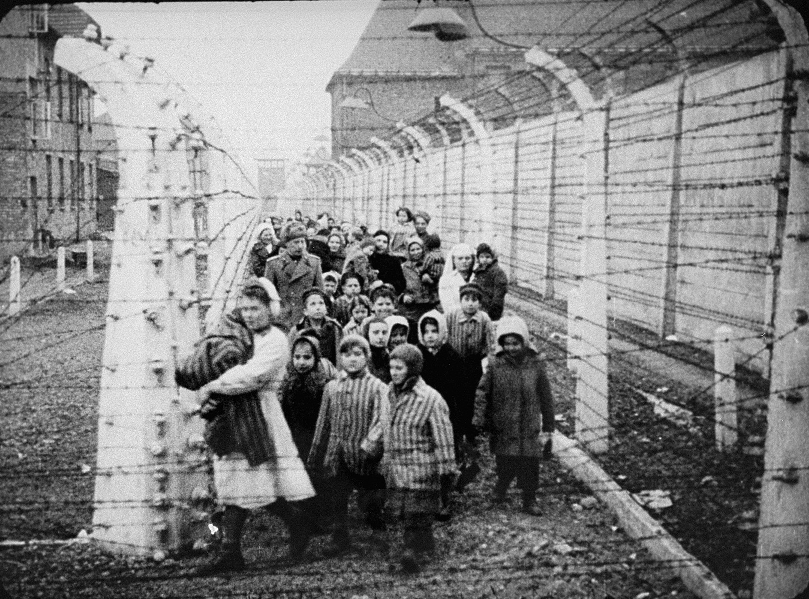 Wearing adult-size prisoner jackets, child survivors of Auschwitz are led by relief workers and Soviet soldiers through a narrow passage between two barbed-wire fences.  Standing next to the nurse are Miriam and Eva Mozes.  Behind them (wearing white hats) are Judy and Lea Csenghery.  Both sets of sisters are twins.  STILL PHOTOGRAPH FROM THE SOVIET FILM of the liberation of Auschwitz, taken by the film unit of the First Ukrainian Front.