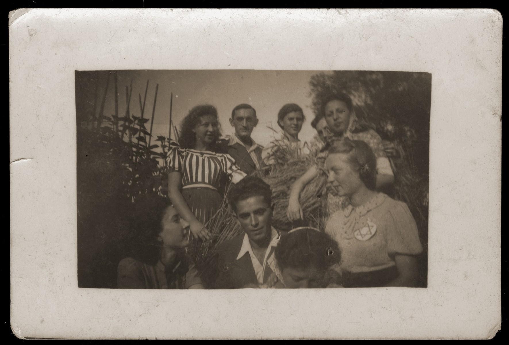Group portrait of Jewish youth in the Dabrowa Gornicza ghetto.   Pictured in the top row from left to right are: Bronka Rubinsztajn,  Abram Zarnowiecki, Lena Zak (Koenigstein), Edzia Wajnsztok.  Bottom row, from left to right are: Sabina Szeps, Majer Rotmencz, Symka Spokojna and Balcia Krysztal.