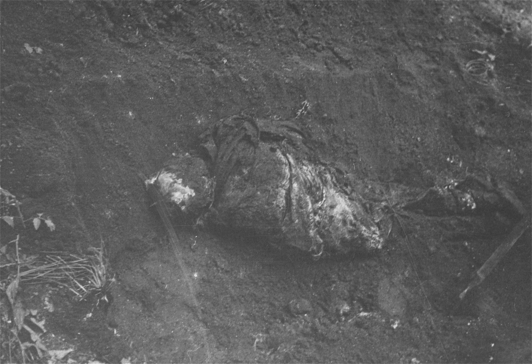 A body found in the ruins of the Warsaw ghetto.