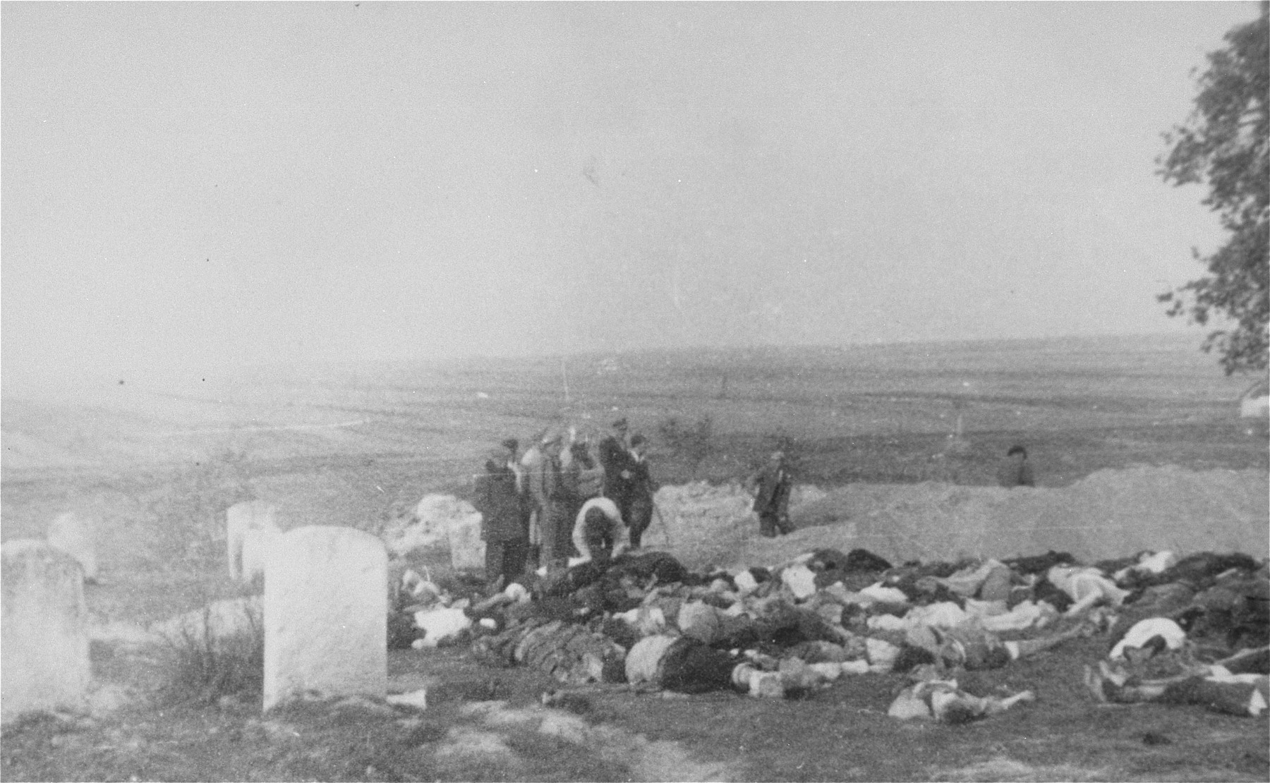 Preparation of a mass grave to bury the Jews murdered in a Jewish cemetery in the vicinity of Bilgoraj.