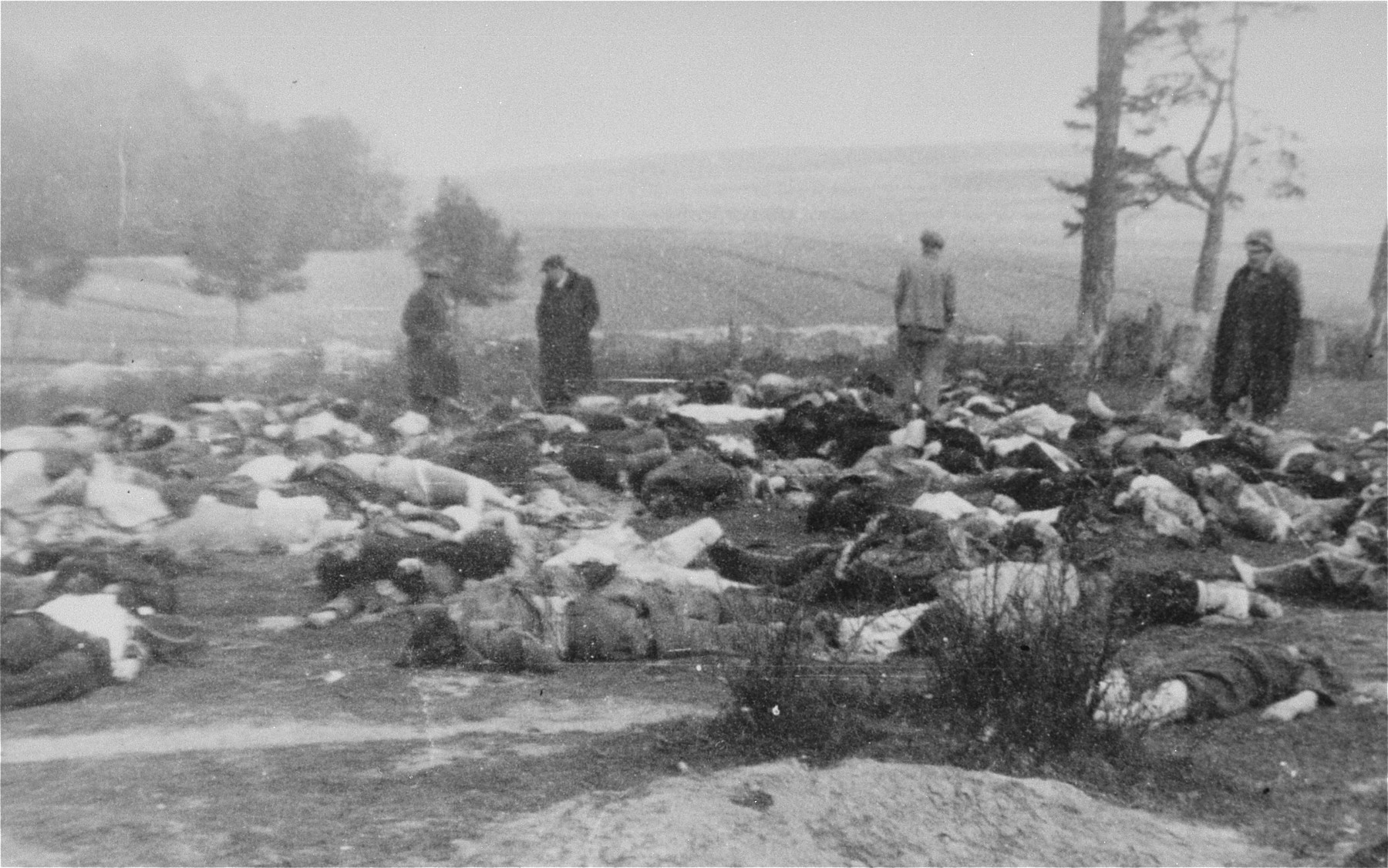 Four men view the bodies of Jews shot at a Jewish cemetery in the vicinity of Bilgoraj.
