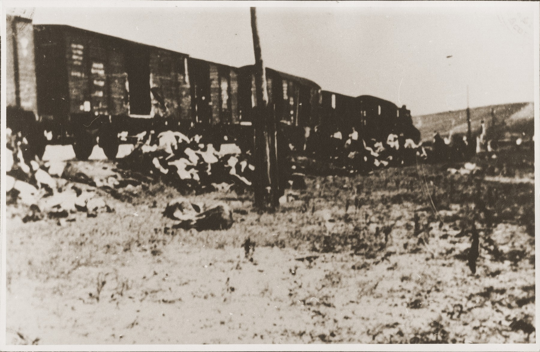 Corpses are removed from the Iasi death train during a stop on the journey.
