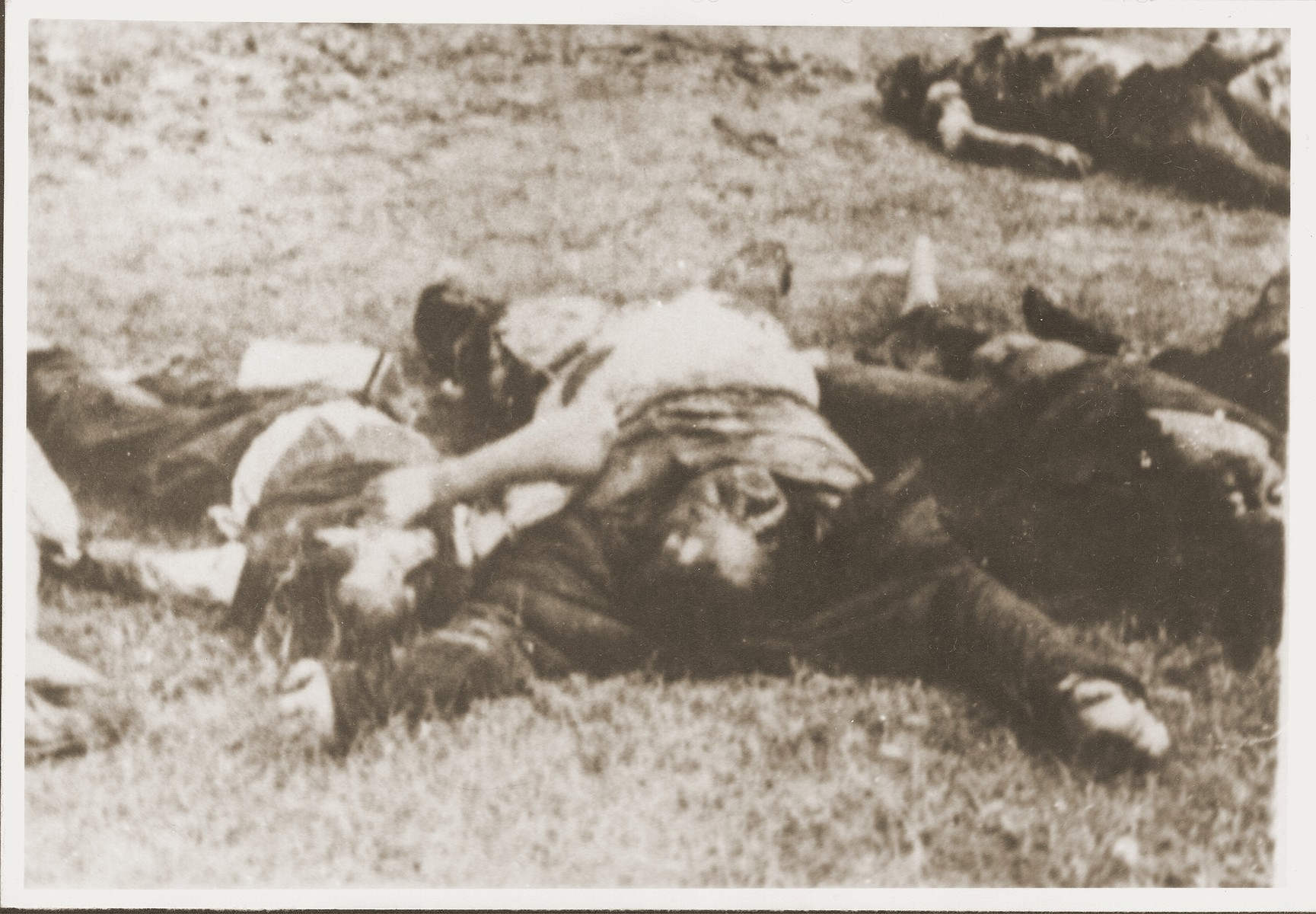 The bodies of Jews removed from the Iasi death train during a stop on the journey, lie beside the tracks.