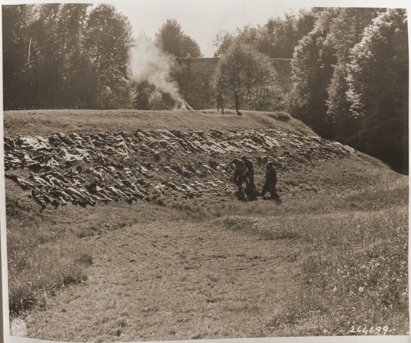 Bodies exhumed from a mass grave near the town of Nammering are laid out on a hillside.