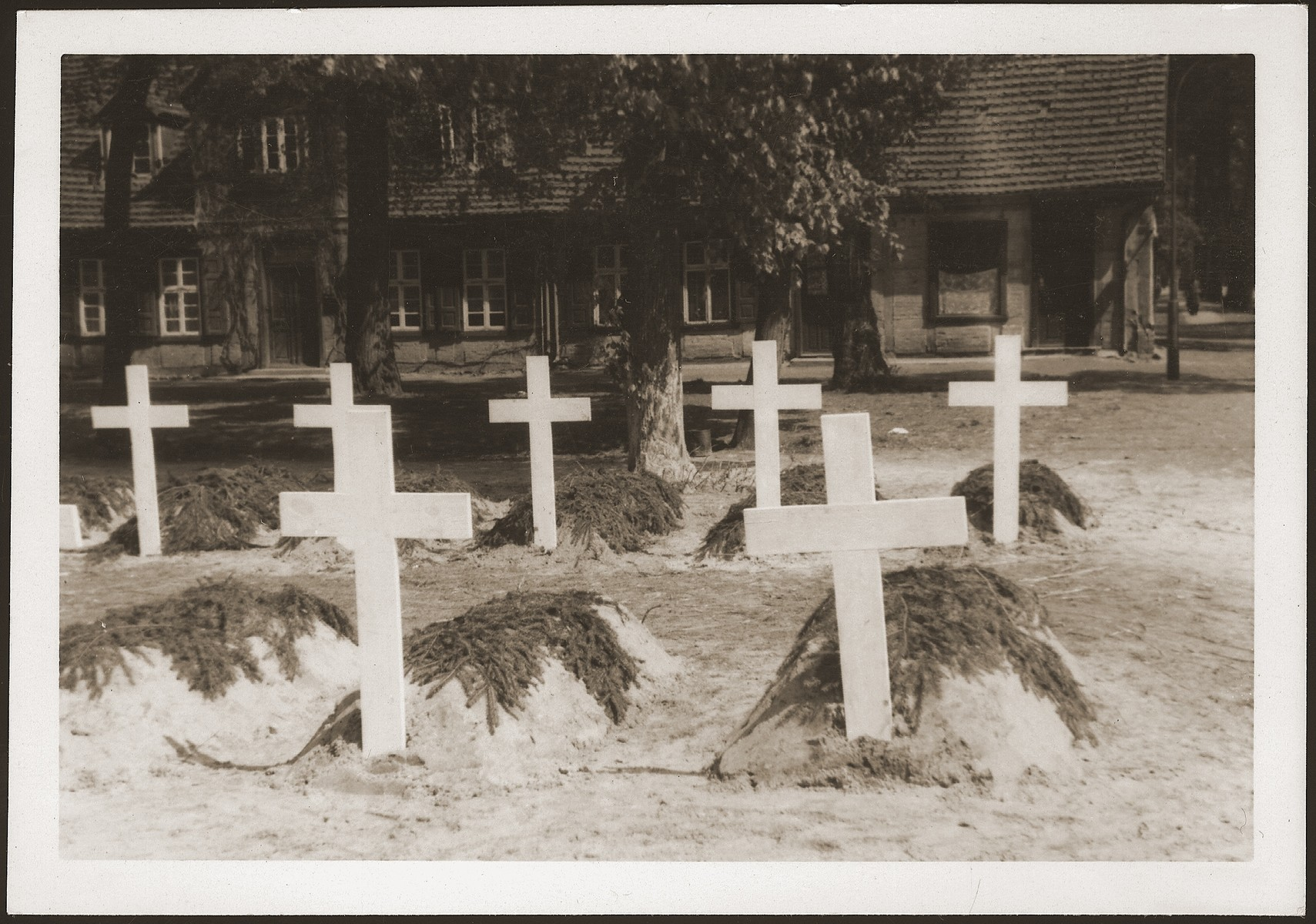 Large crosses mark the graves of prisoners from the Woebbelin concentration camp who were buried on the palace grounds of the Archduke of Mecklenburg in Ludwigslust.
