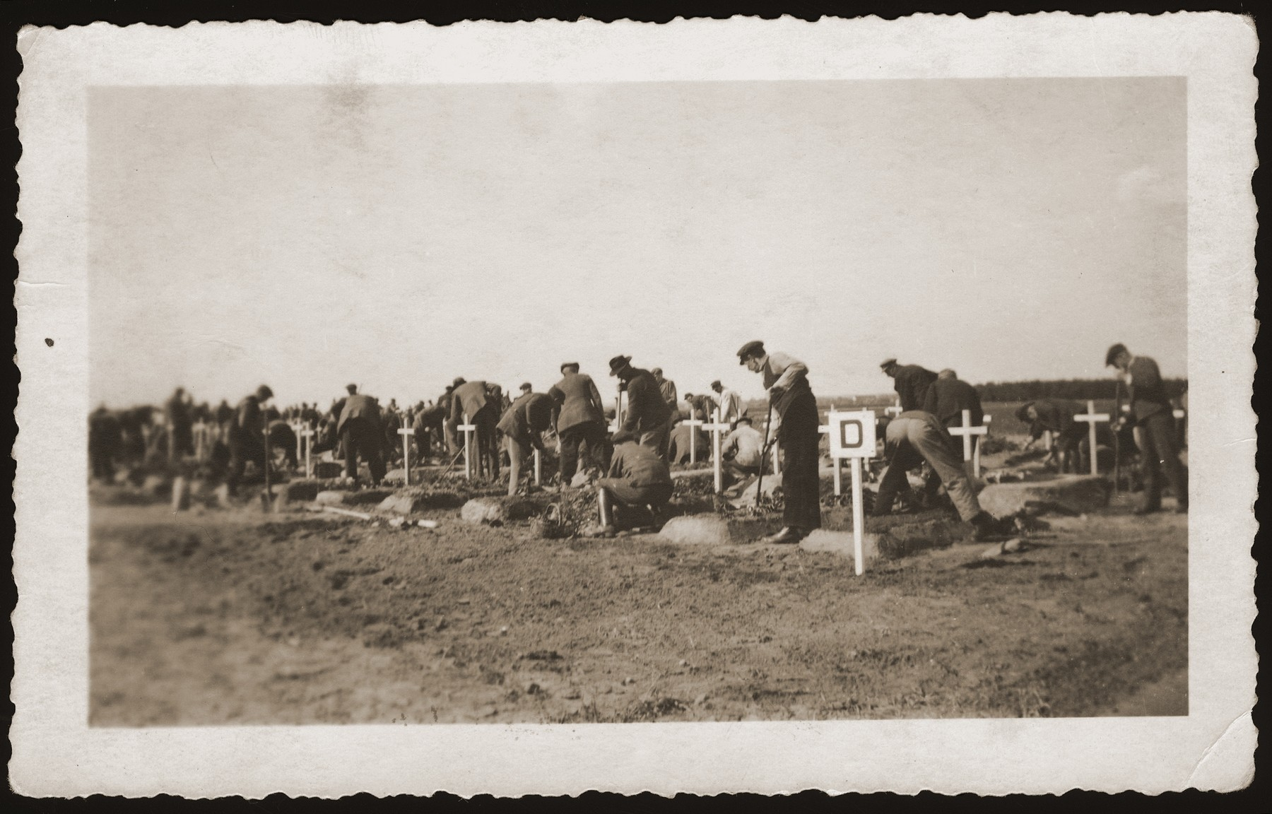 German civilians place pine boughs on the graves of concentration camp prisoners killed by the SS in a barn outside of Gardelegen.