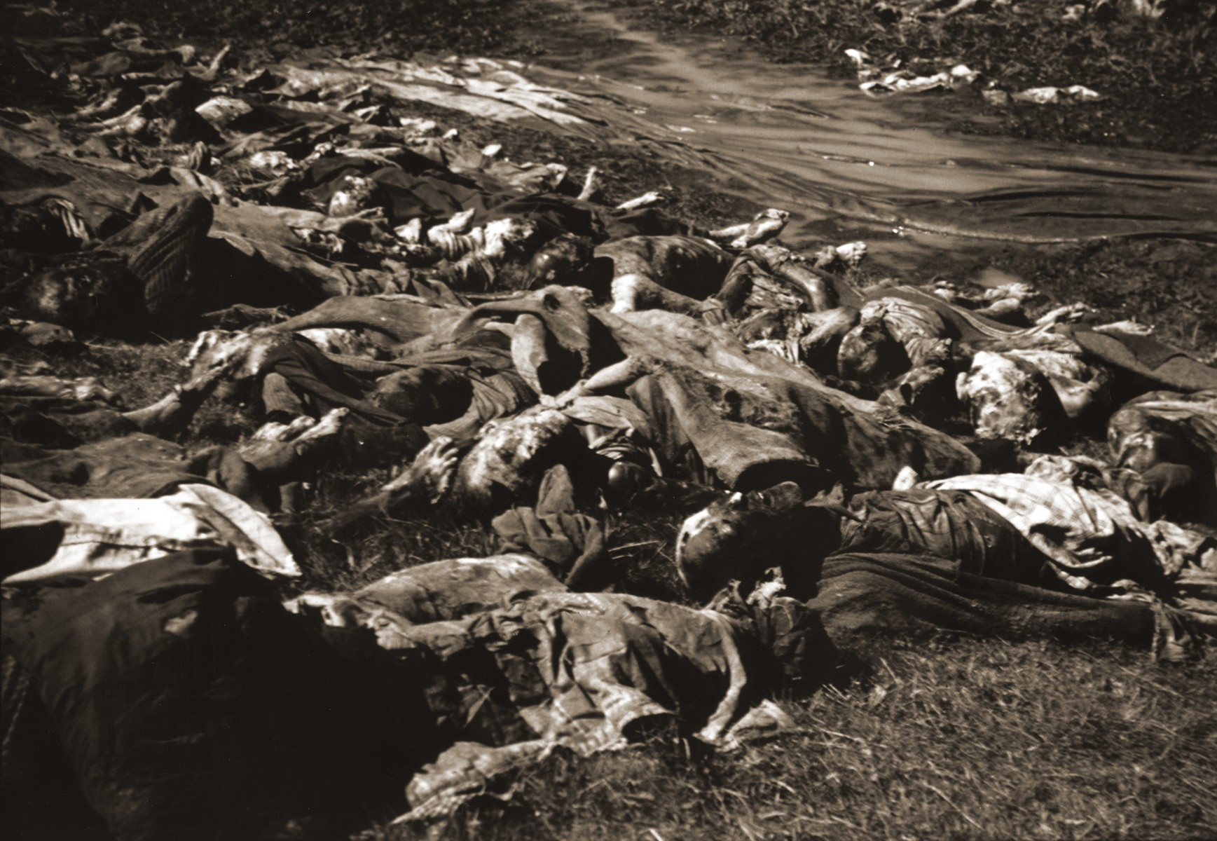 The corpses of prisoners exhumed from a mass grave near Nammering.