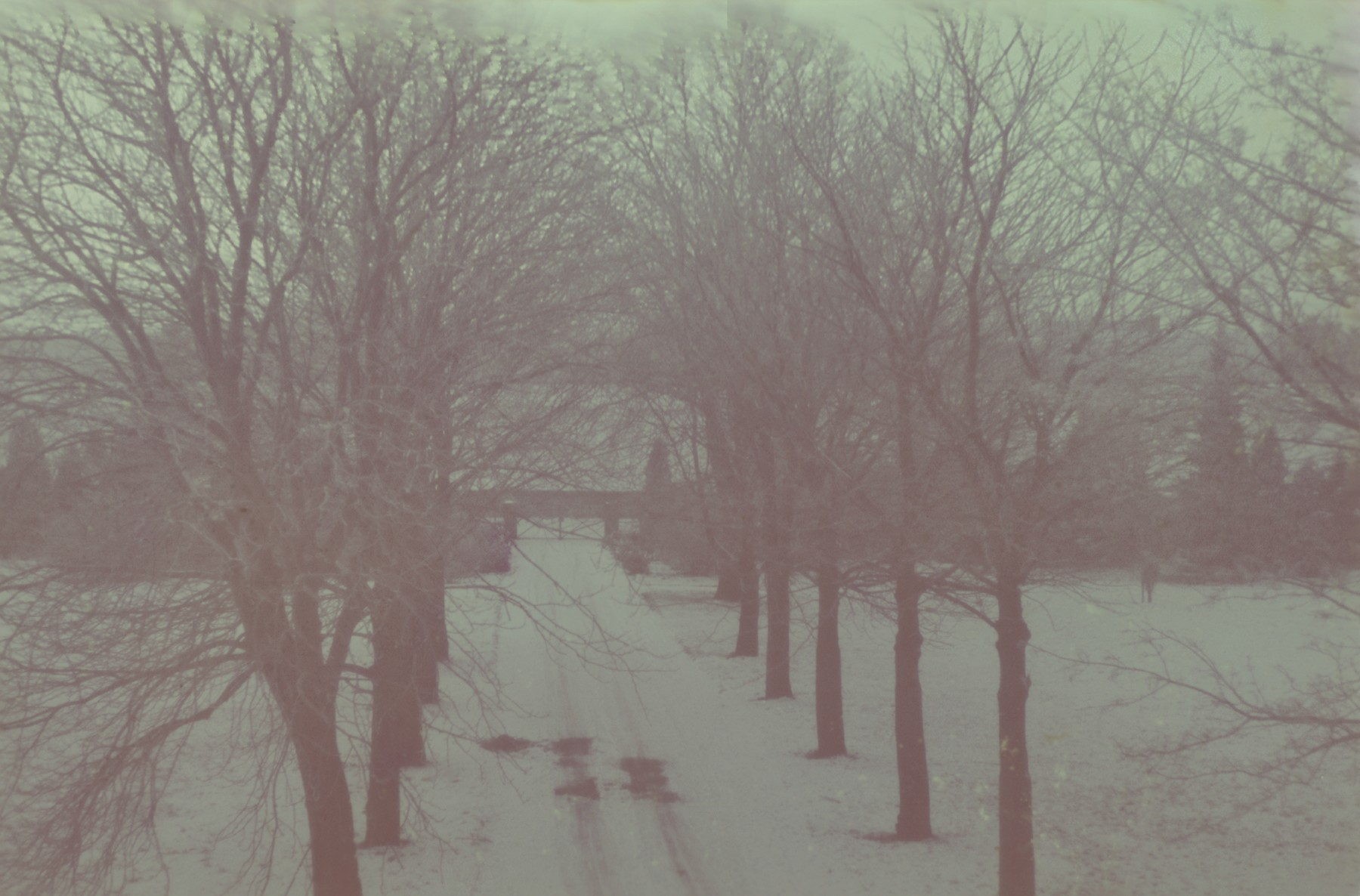 Unidentified winter landscape from the Genewein collection.