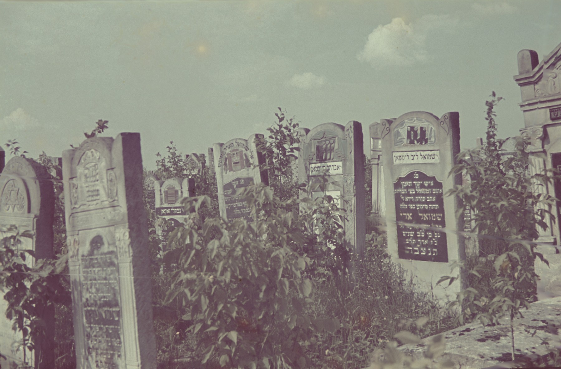 View of tombstones in the Lodz ghetto Jewish cemetery.