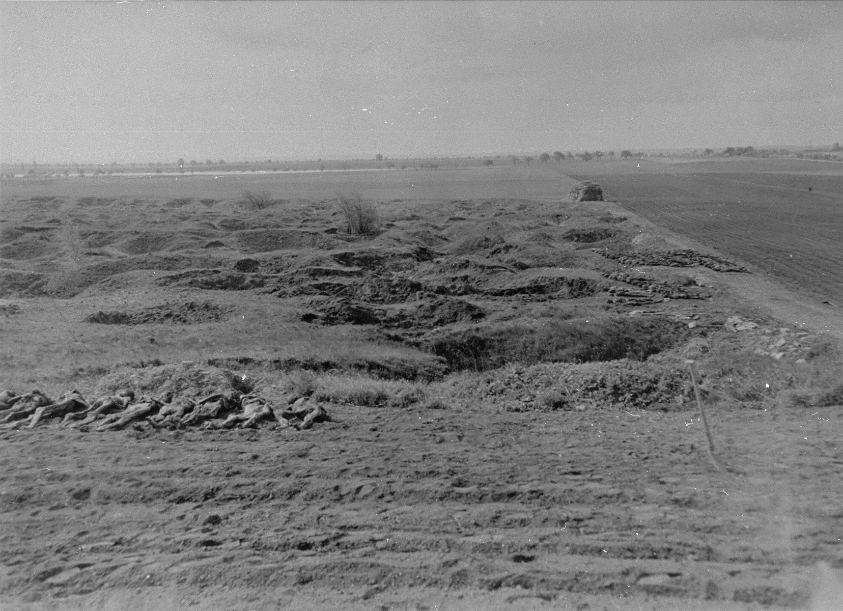 "View of corpses exhumed from mass graves in Ploemnitz (""Leau"" after 10 October 1944), a sub-camp of Buchenwald."