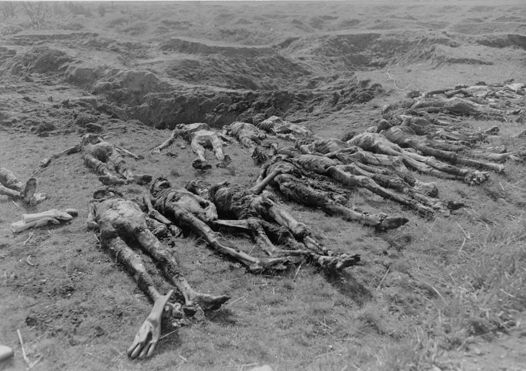 "Corpses exhumed from a mass grave in Ploemnitz (""Leau"" after 10 October 1944), a sub-camp of Buchenwald."