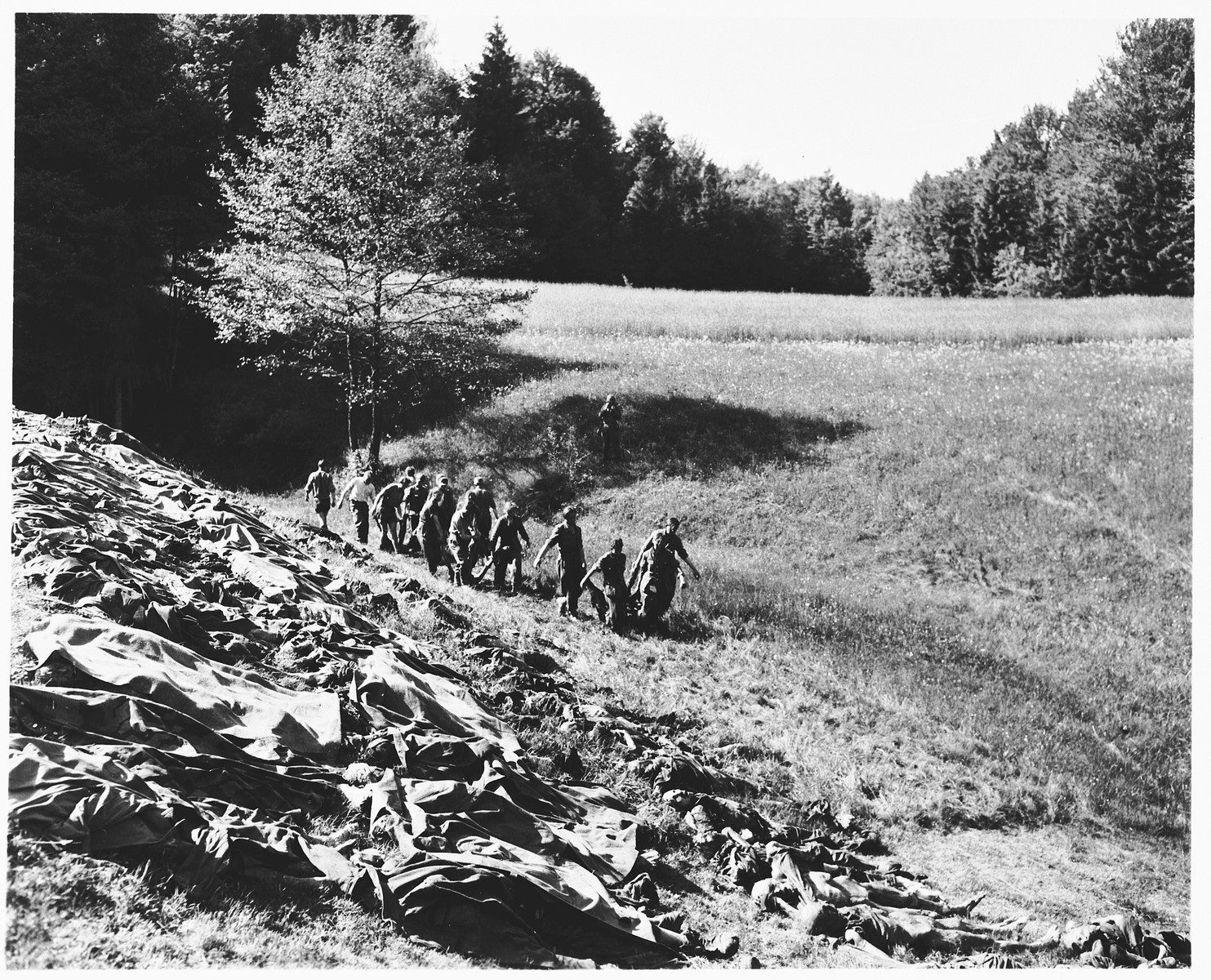 German prisoners of war from a nearby internment camp carry corpses exhumed from a mass grave near Nammering to a hillside where they will be shown to local townspeople.