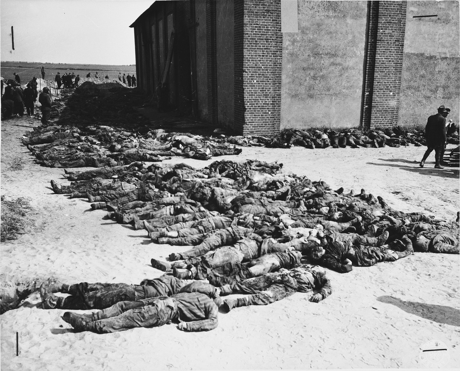 Corpses lined up on the north side of the barn located outside of Gardelegen.  In the background, American soldiers supervise German civilians as they exhume corpses from a mass grave.