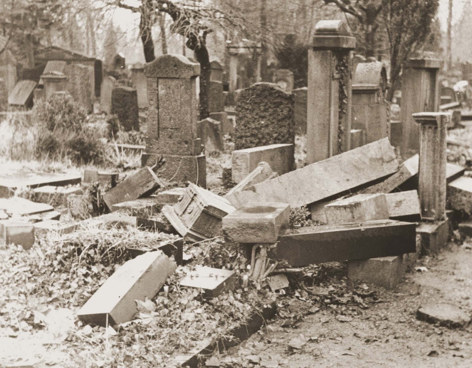View of the desecrated Jewish cemetery in Frankfurt-am-Main.
