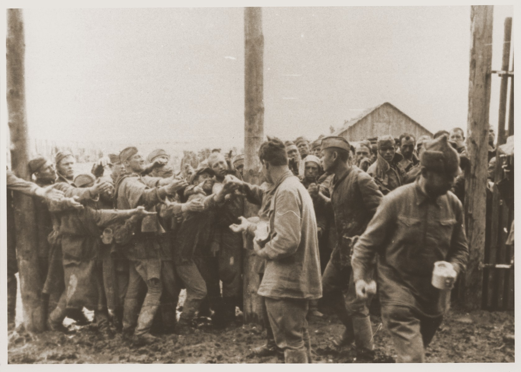 Soviet POWs hand out bread in the camp at Vinnitsa.