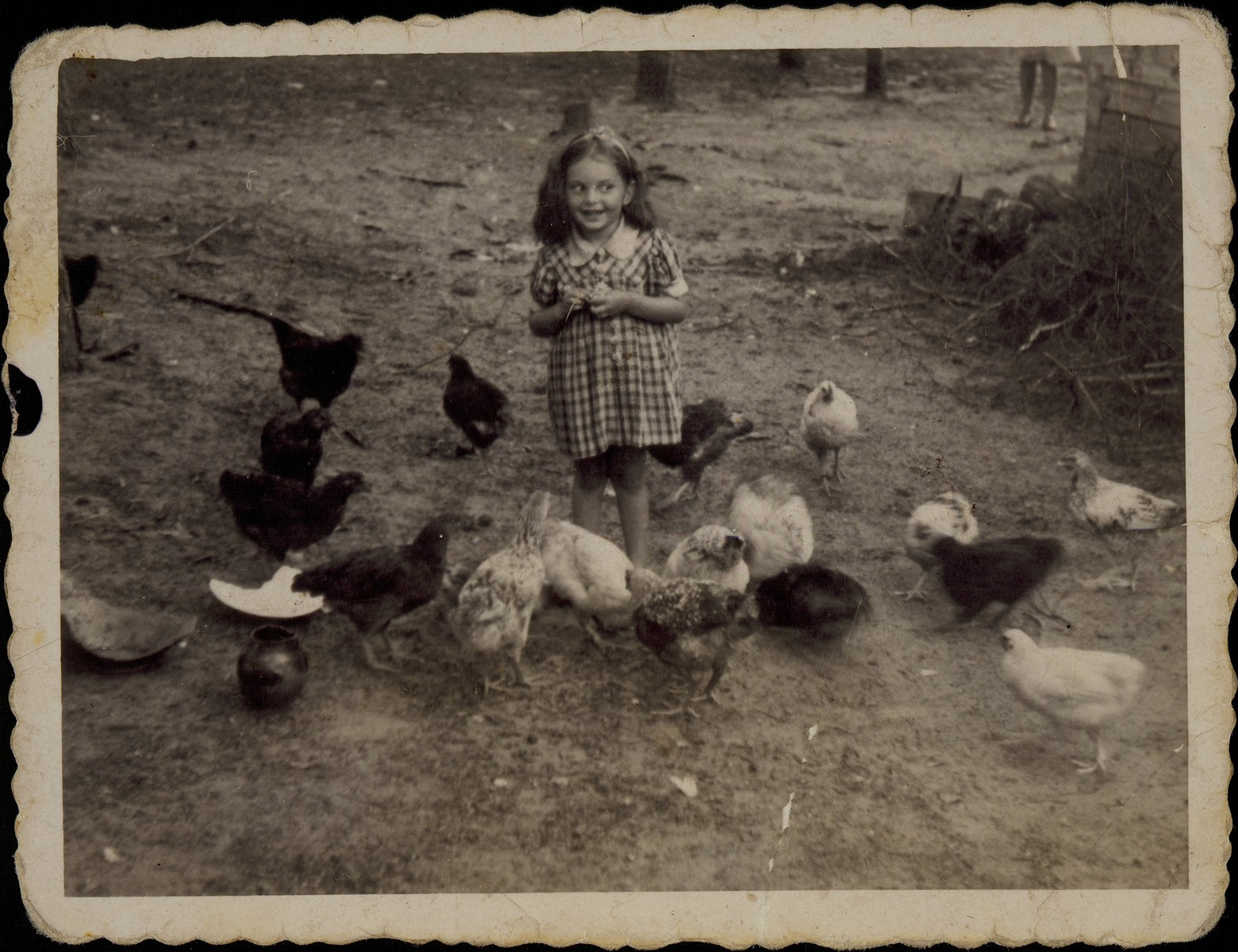 Yaffa Sonenson (now Eliach) feeds chickens in front of her family's summer home in Tetlance the same day that Germany occupied Eisiskes.   This was the last photograph taken by her grandmother, Alte Katz, who was killed by the Germans in the September 1941 mass shooting action in Eisiskes.