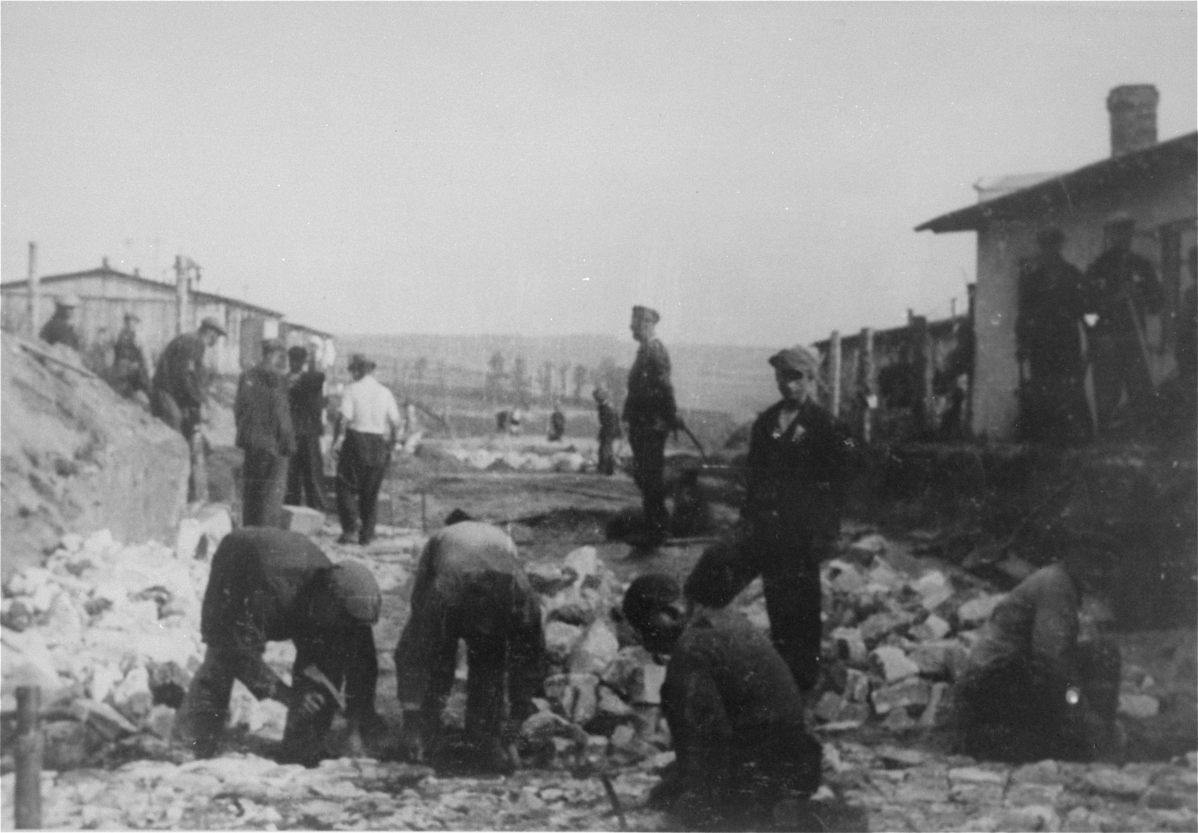 Prisoners at forced labor in the Janowska concentration camp.