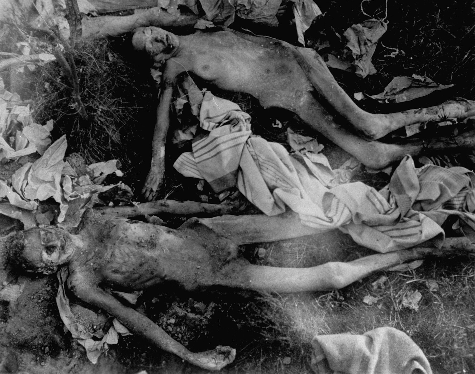 The bodies of female prisoners exhumed from a mass grave near the Helmbrechts concentration camp, a sub-camp of Flossenbuerg.