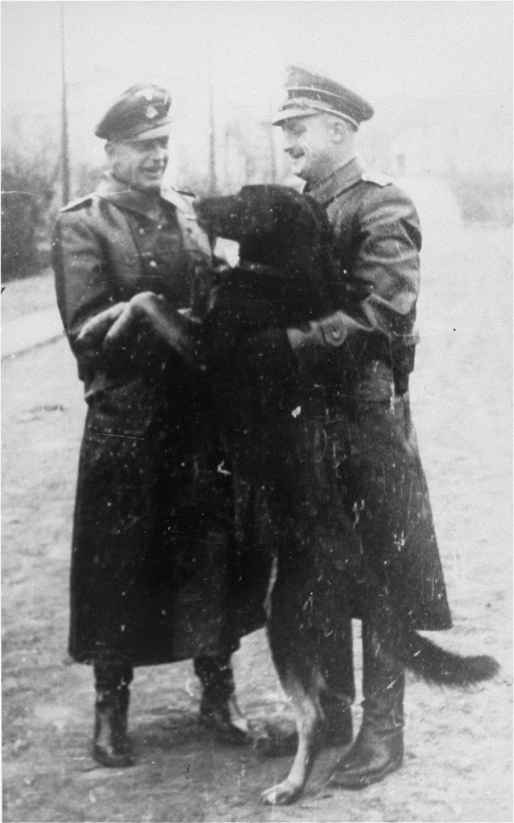 Two SS officers pose with a guard dog in the Janowska concentration camp.
