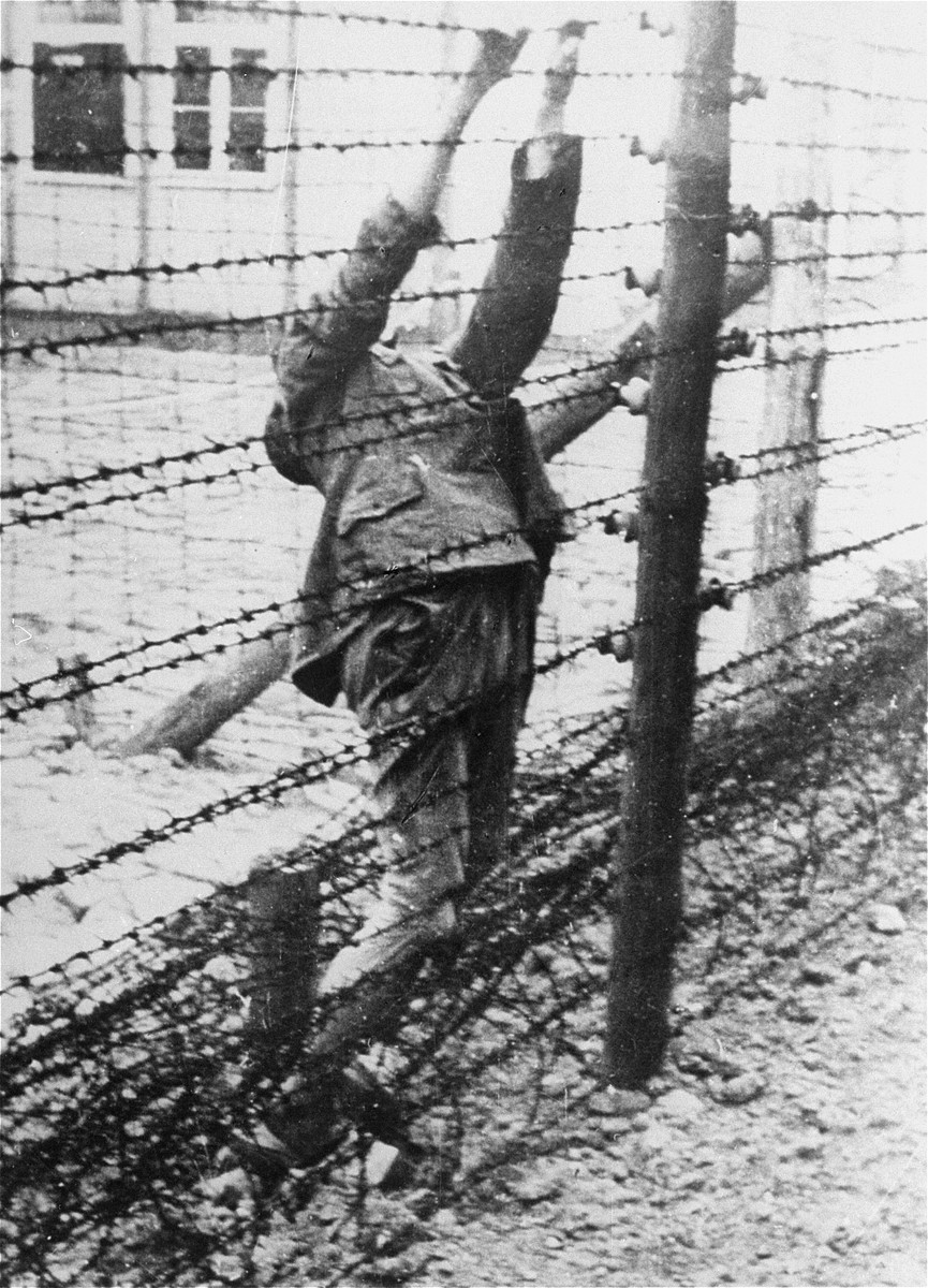 The body of a Soviet prisoner of war who committed suicide on an electrified barbed wire fence in Mauthausen.