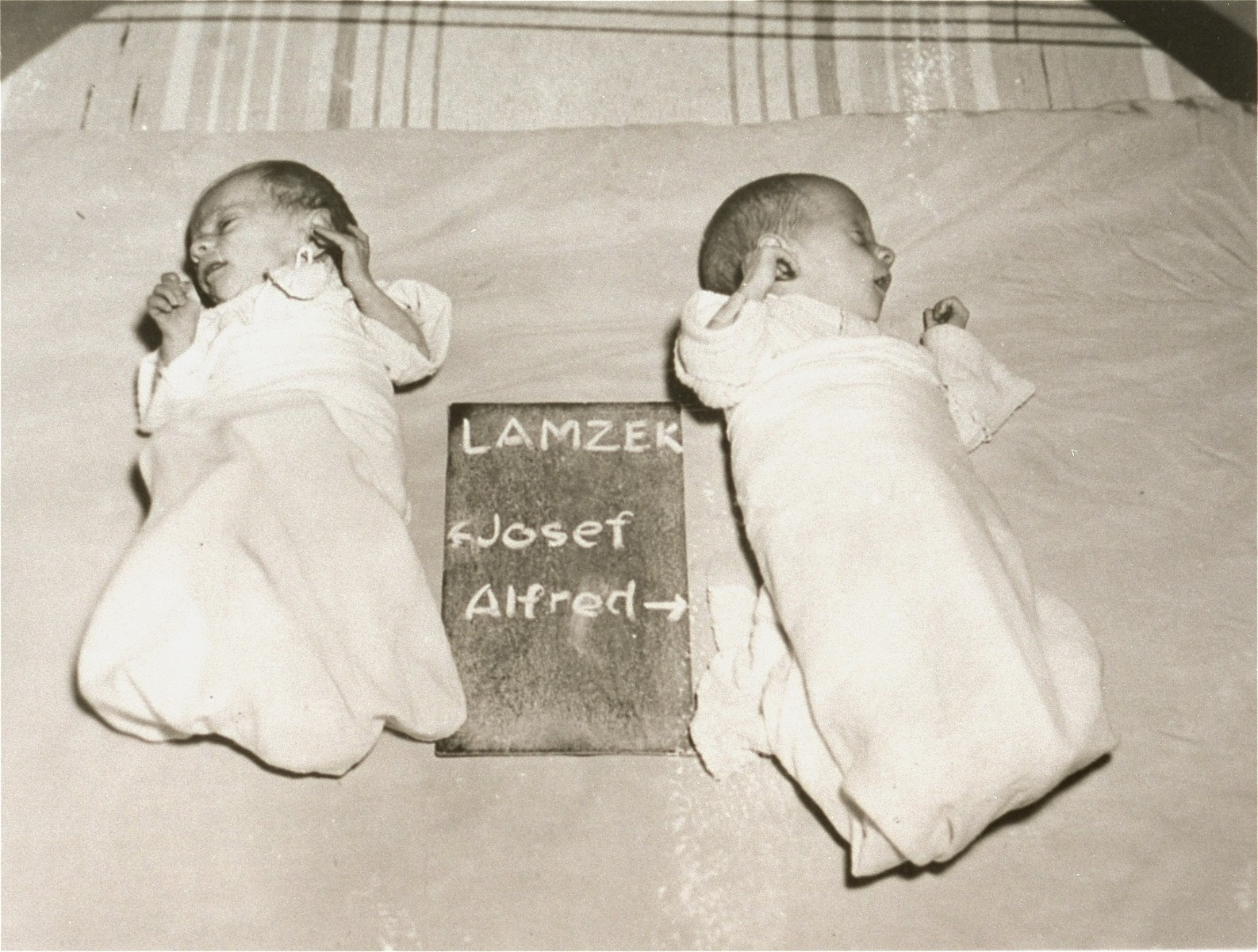 Josef and Alfred Lamzek with a name card intended to help any of their surviving family members locate them at the Kloster Indersdorf DP camp.  This photograph was published in newspapers to facilitate reuniting the family.