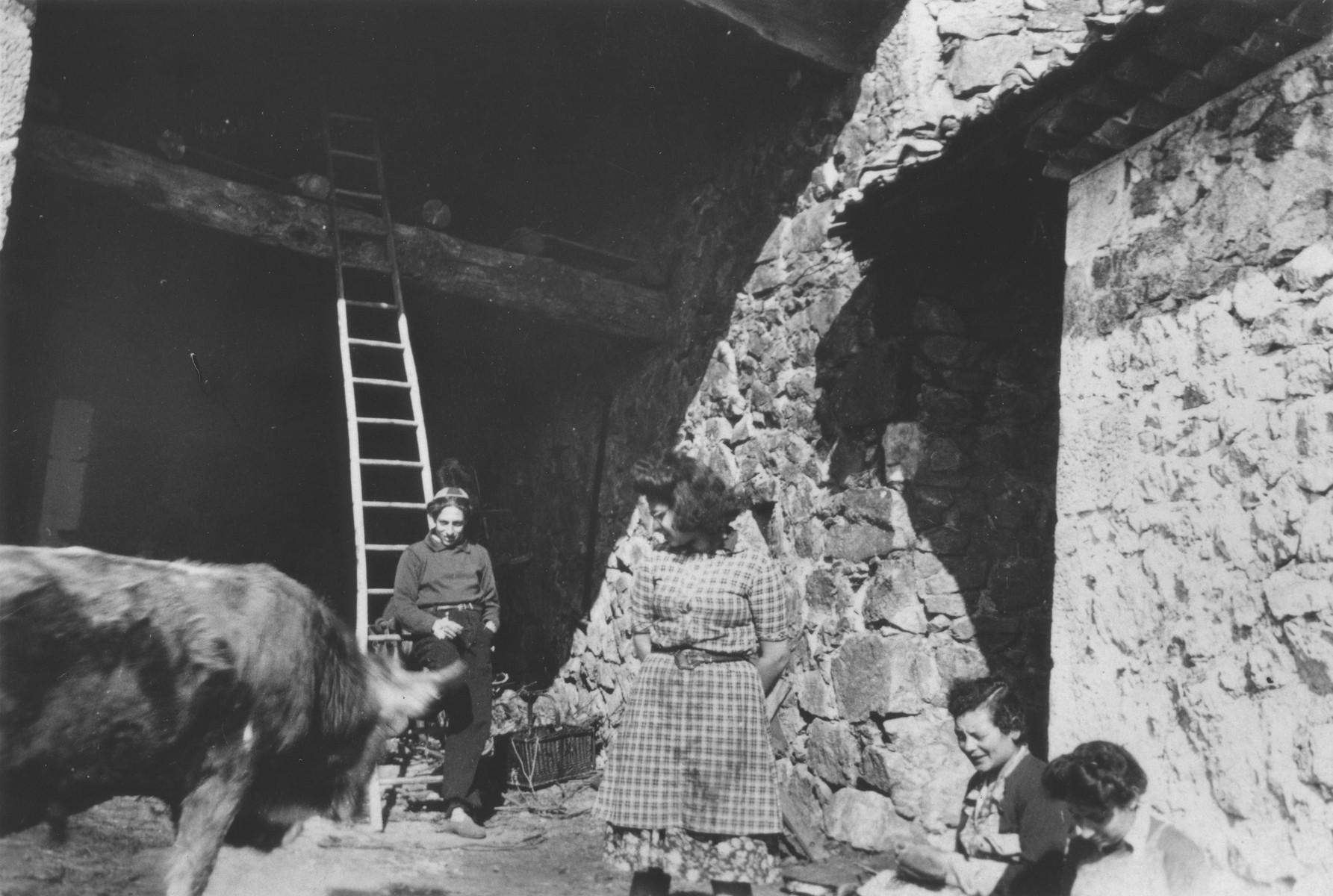 Jewish youth in hiding on a farm in Taluyers during the German occupation.    Pictured is Robert Loeb.