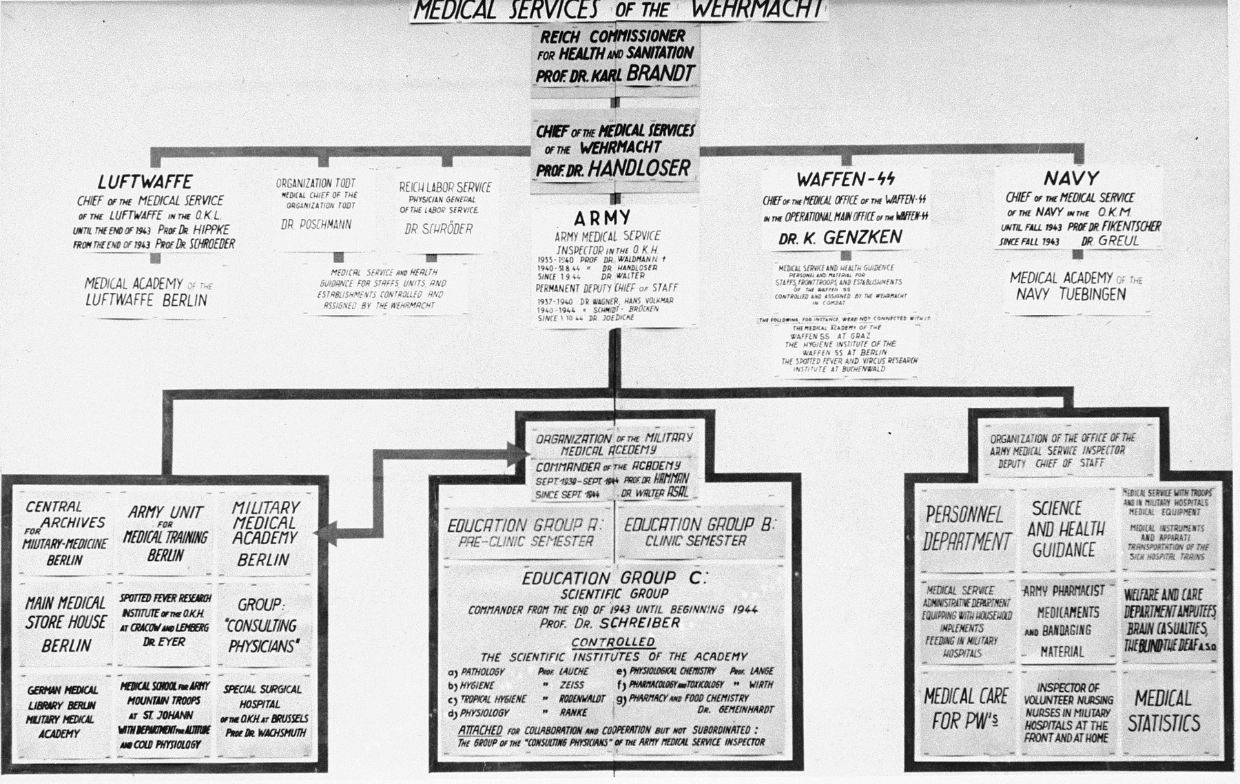 A chart illustrating the organization and hierarchy of the medical services in the German army which was used during the Medical Case Trial in Nuremberg.