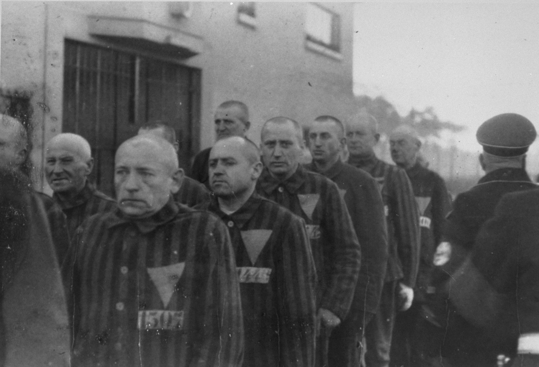 Sachsenhausen prisoners, wearing uniforms with triangular badges, stand in columns under the supervision of a camp guard.