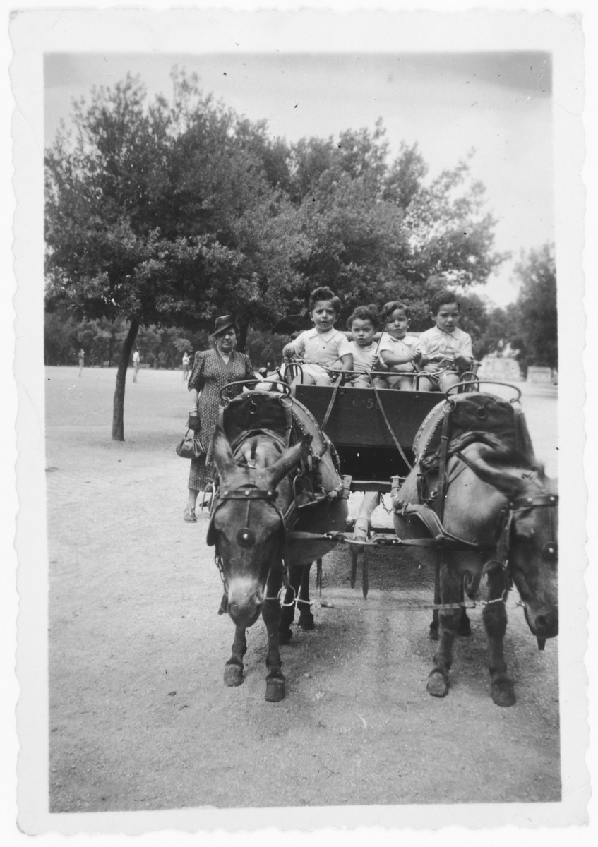 David and Nando Tagliacozzo go for a horse and buggy ride with their cousins Leilo and David de'Alir.
