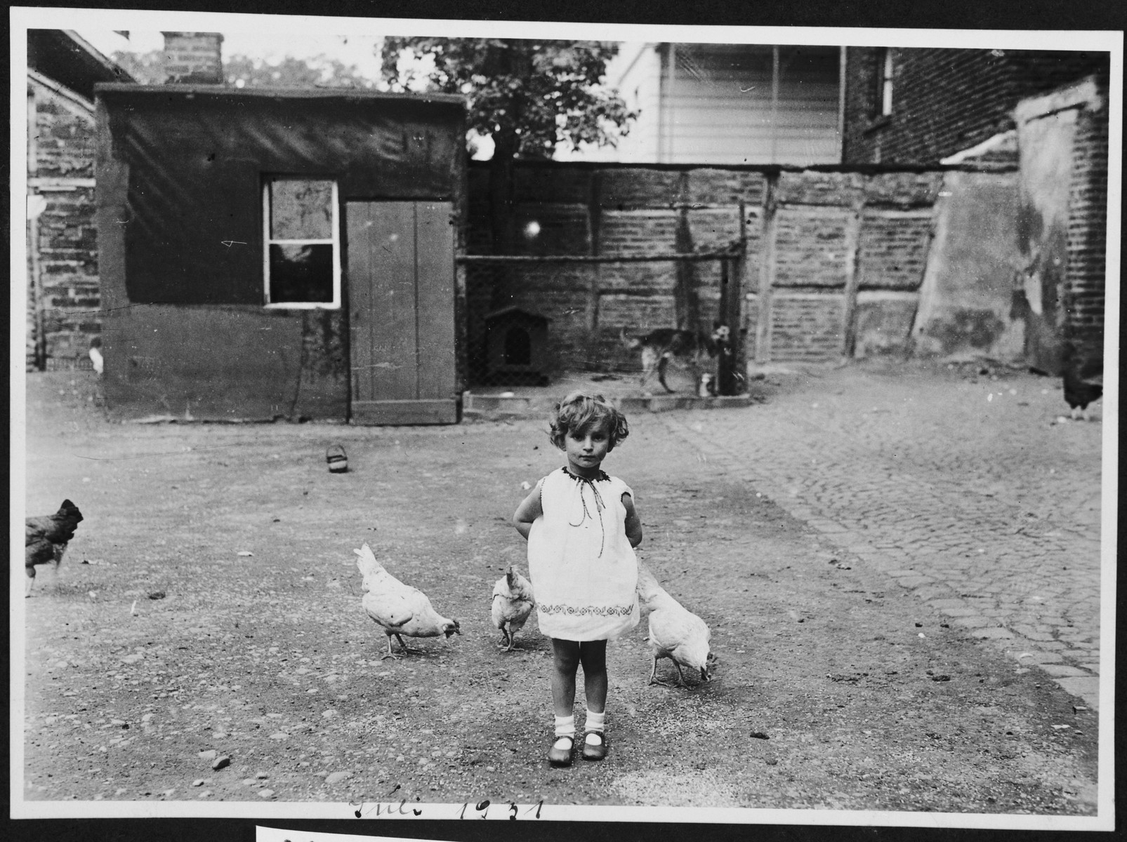 A Jewish child stands among the chickens on her parent's farm in Lechenich, Germany.  Pictured is Inge Berg. The family's sukkah can be seen in the background.