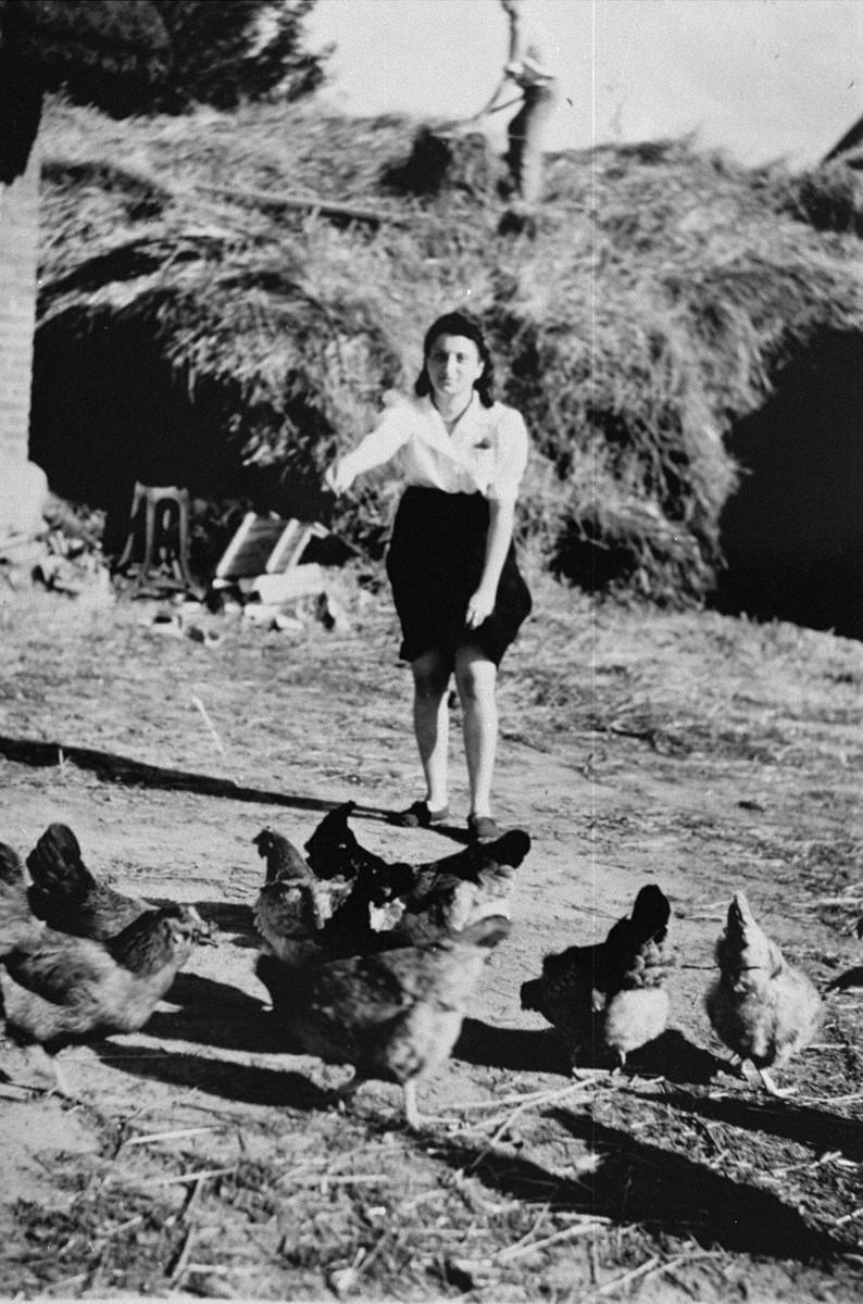 Sylvia Kramarski feeds chickens on he Pawlak farm in Krushev where she is in hiding.