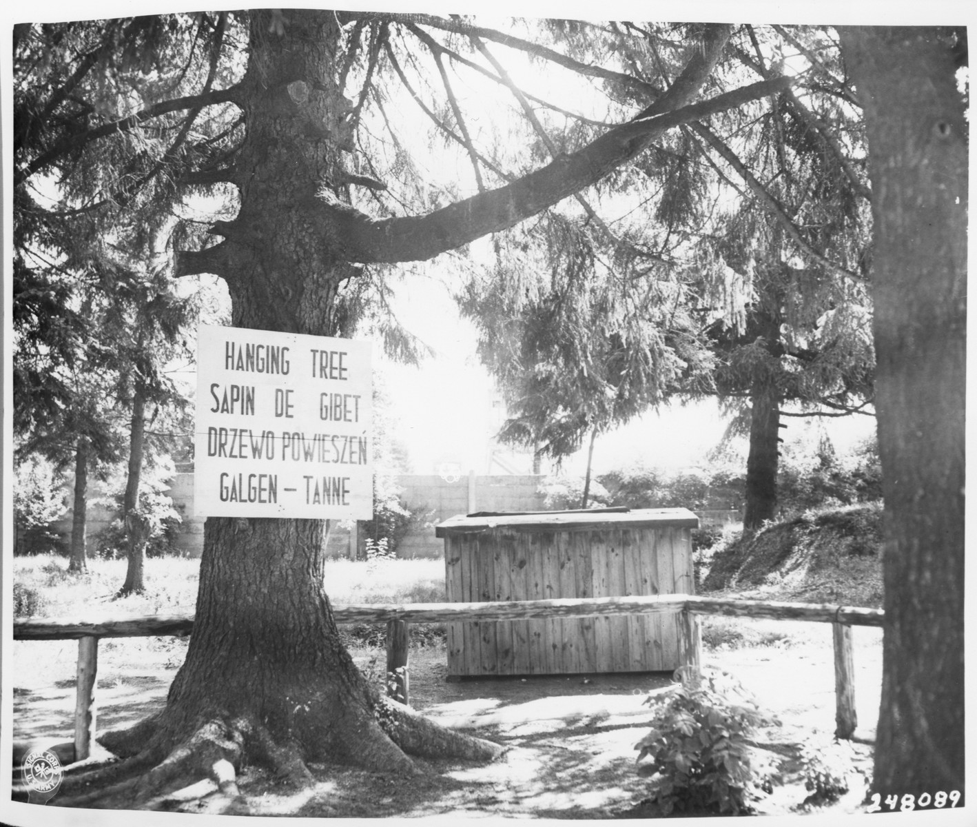View of a tree in the Dachau concentration camp, located near the crematorium, where prisoners were hanged.  A sign in four languages identifying how it was used is posted on the tree.