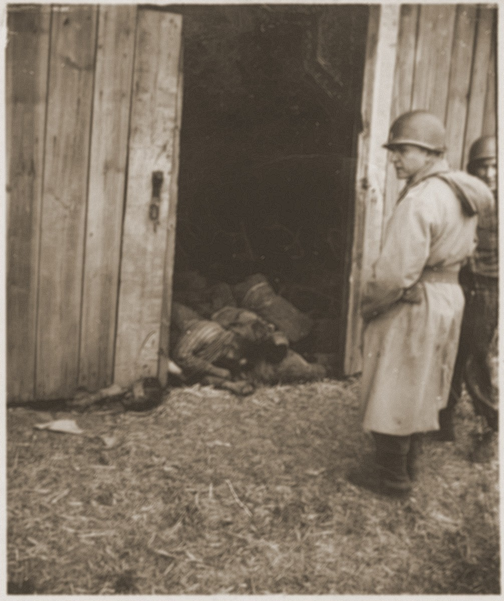 An American officer inspects the site of the Gardelegen atrocity.