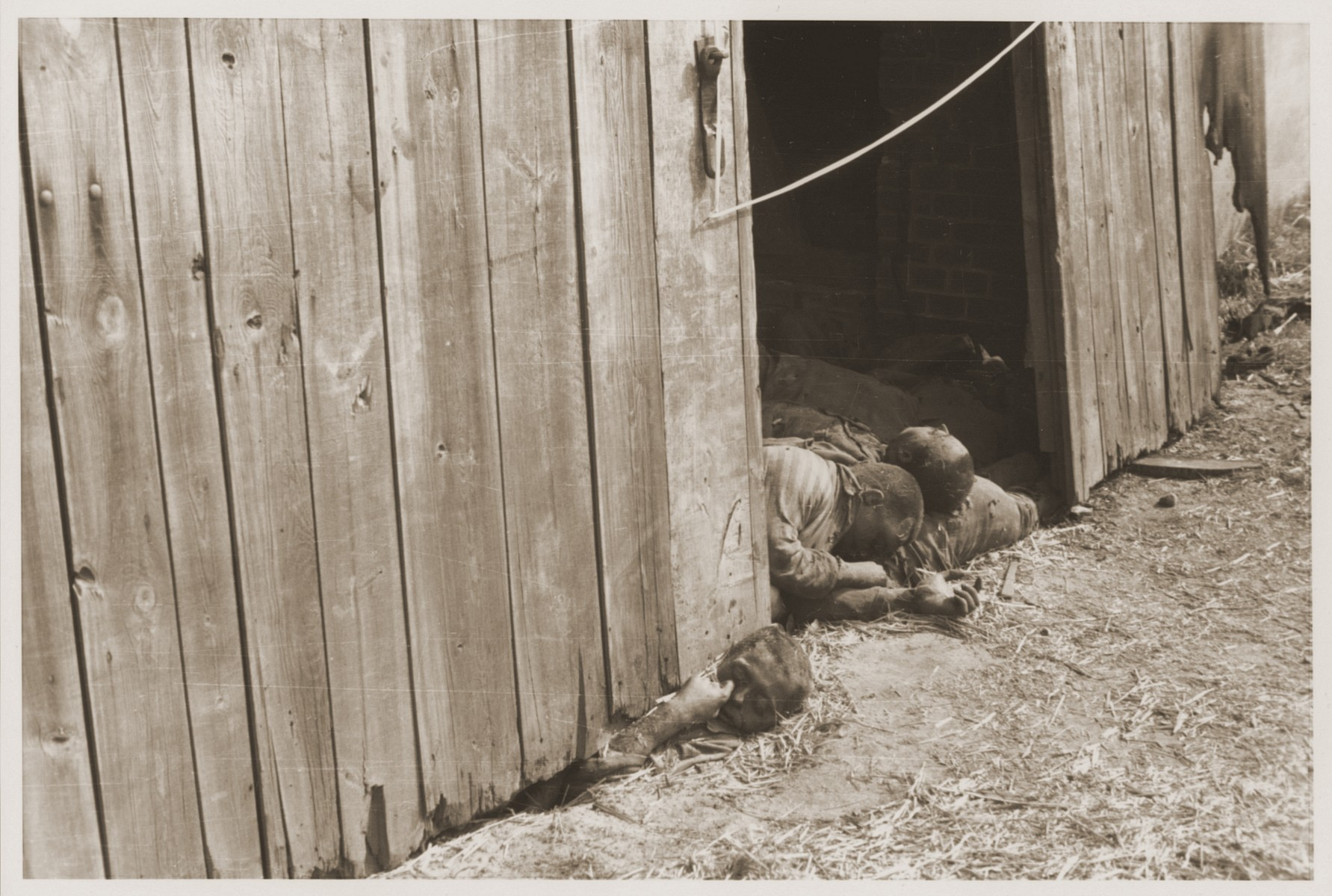 The charred bodies of prisoners just inside the entrance of the barn outside of Gardelegen.