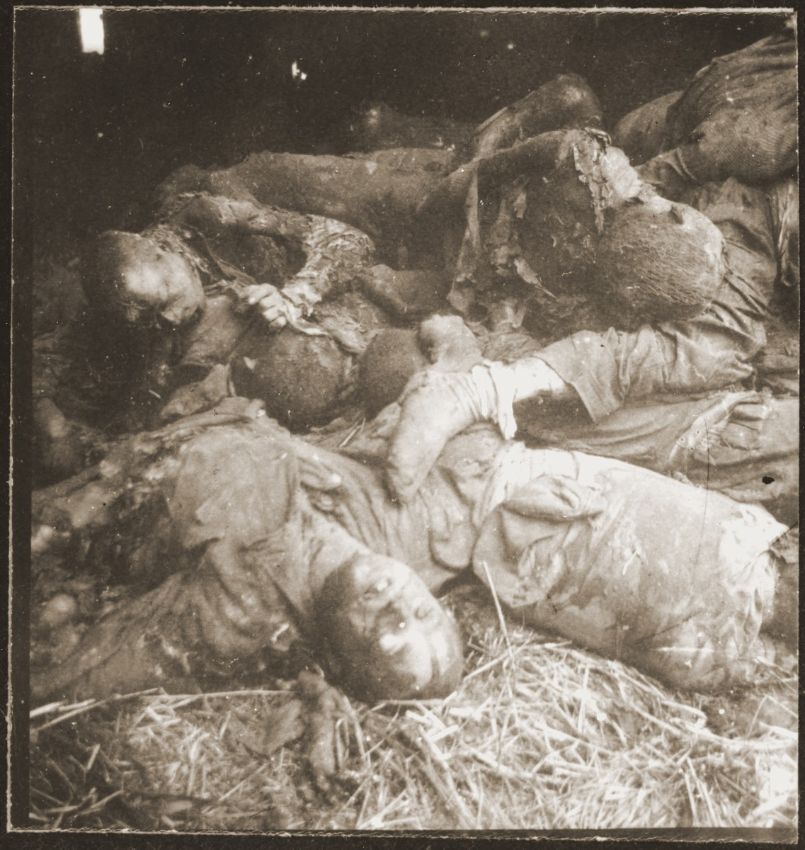 The charred corpses of prisoners burned alive by the SS in a barn outside Gardelegen.