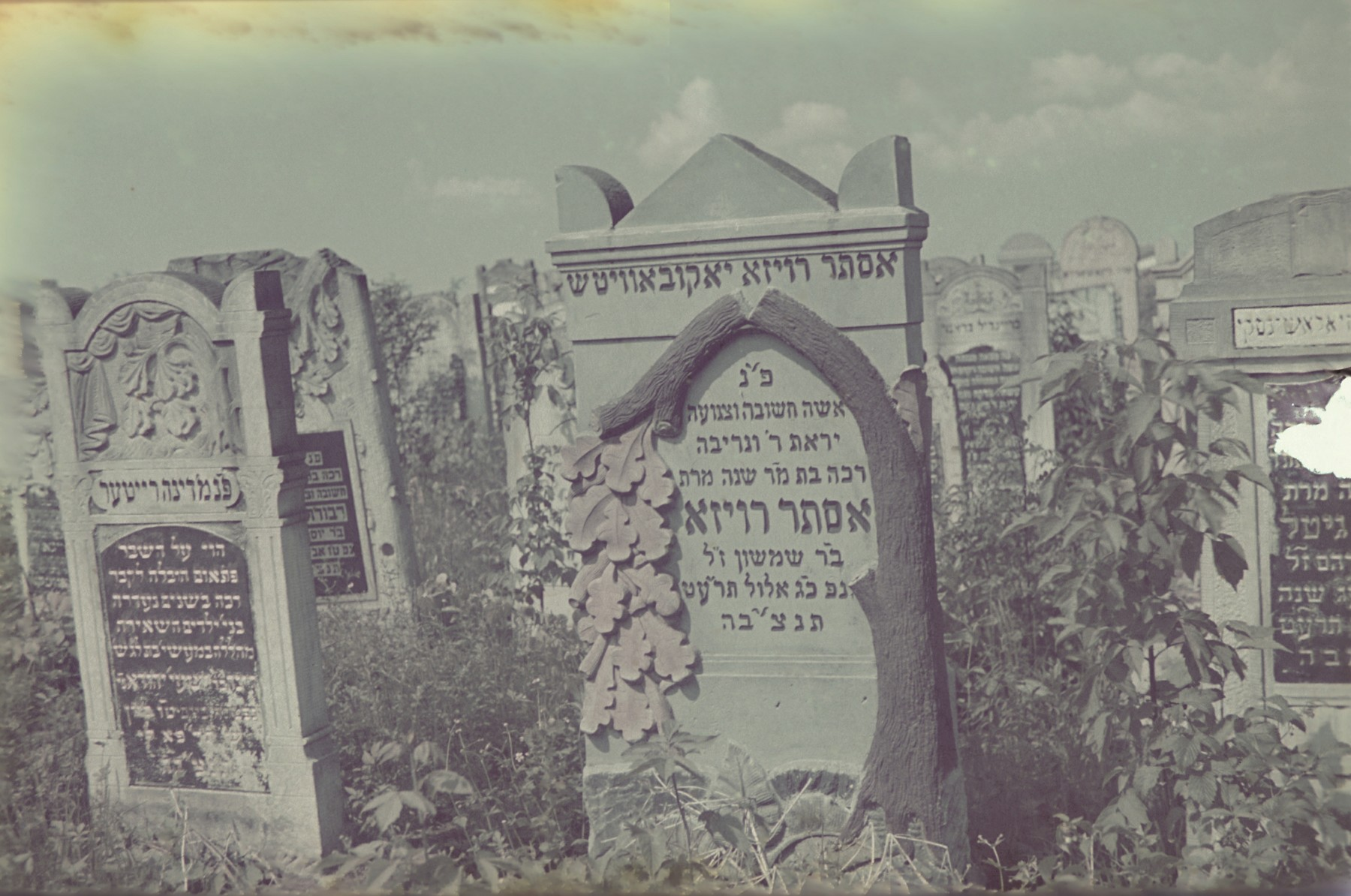 View of tombstones in the Lodz ghetto cemetery.