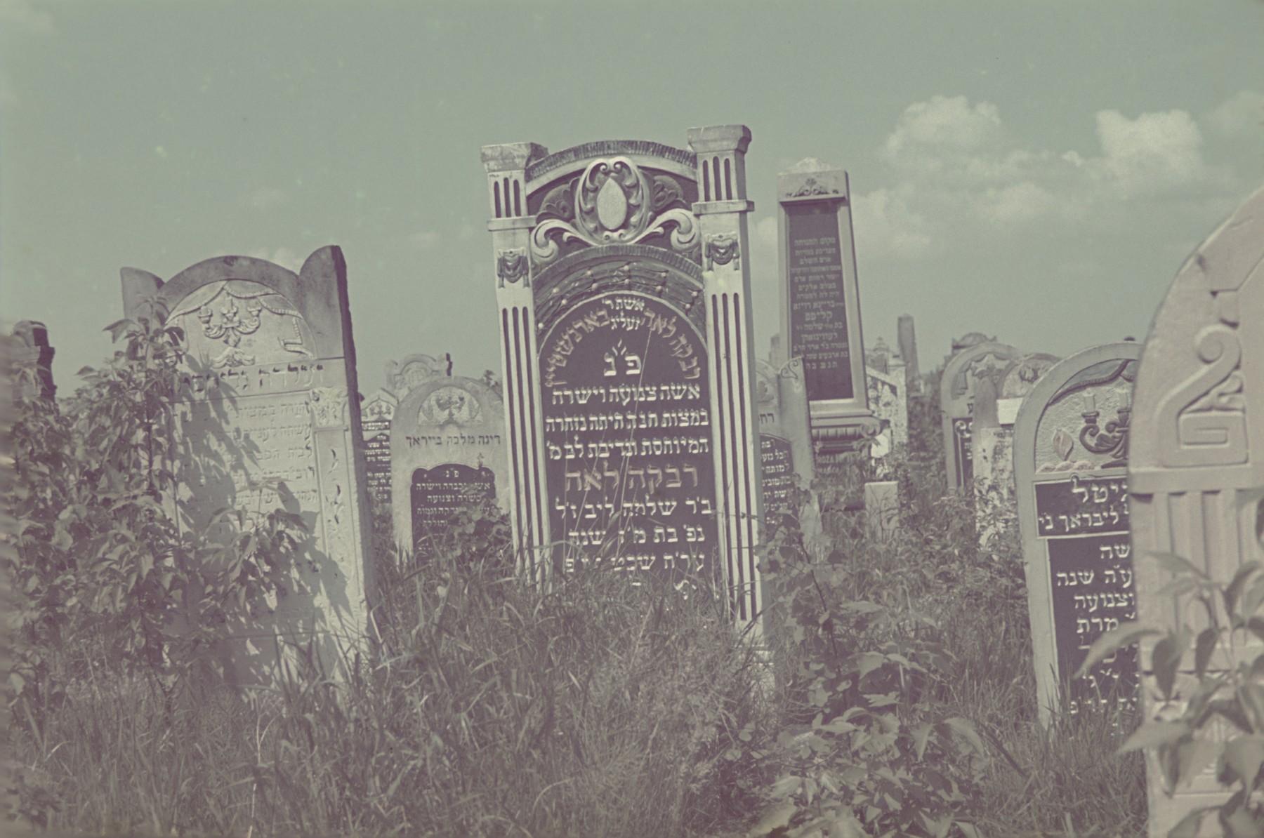 Tombstones in the Lodz ghetto cemetery.