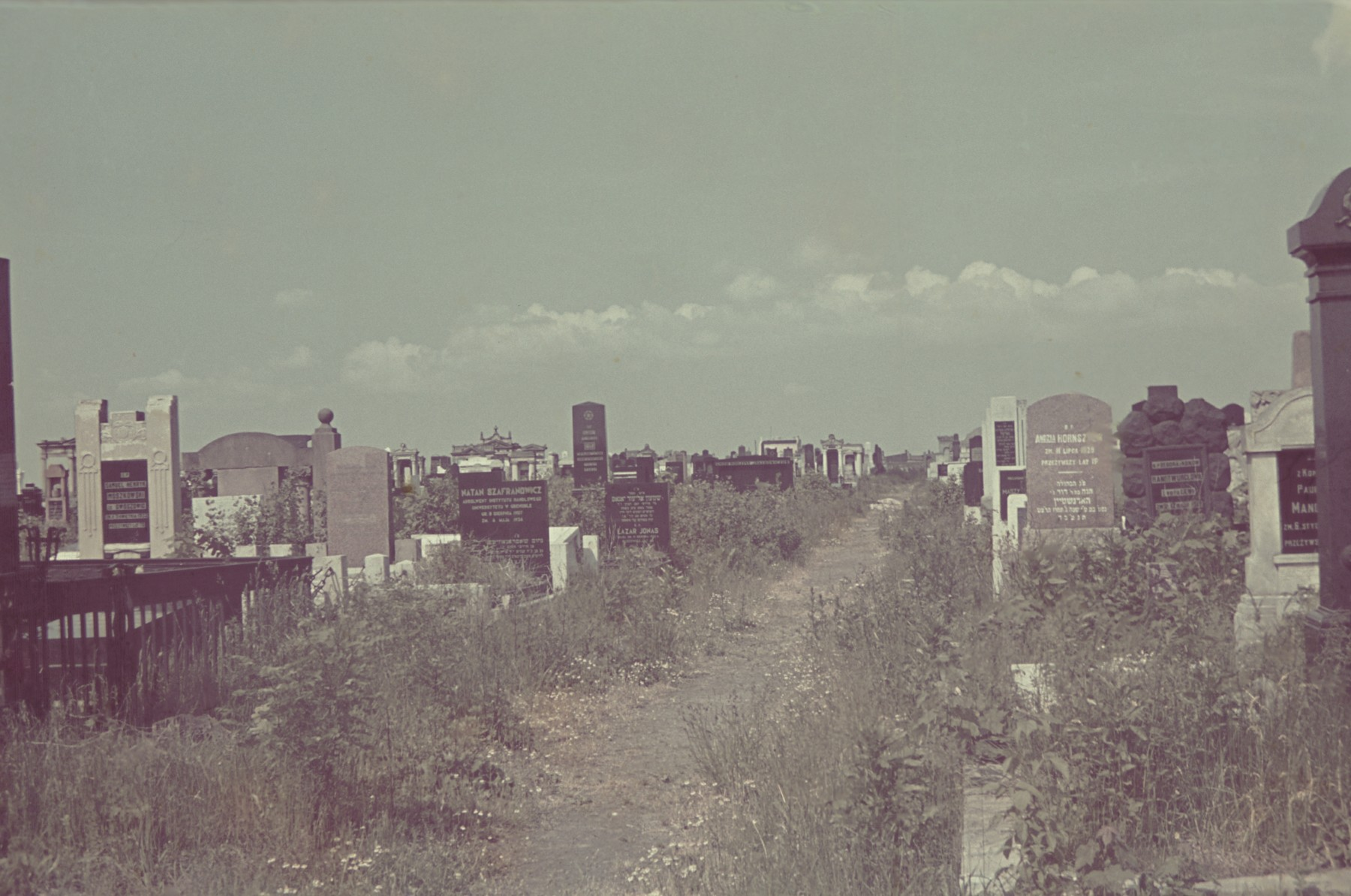 View of the Lodz ghetto cemetery.