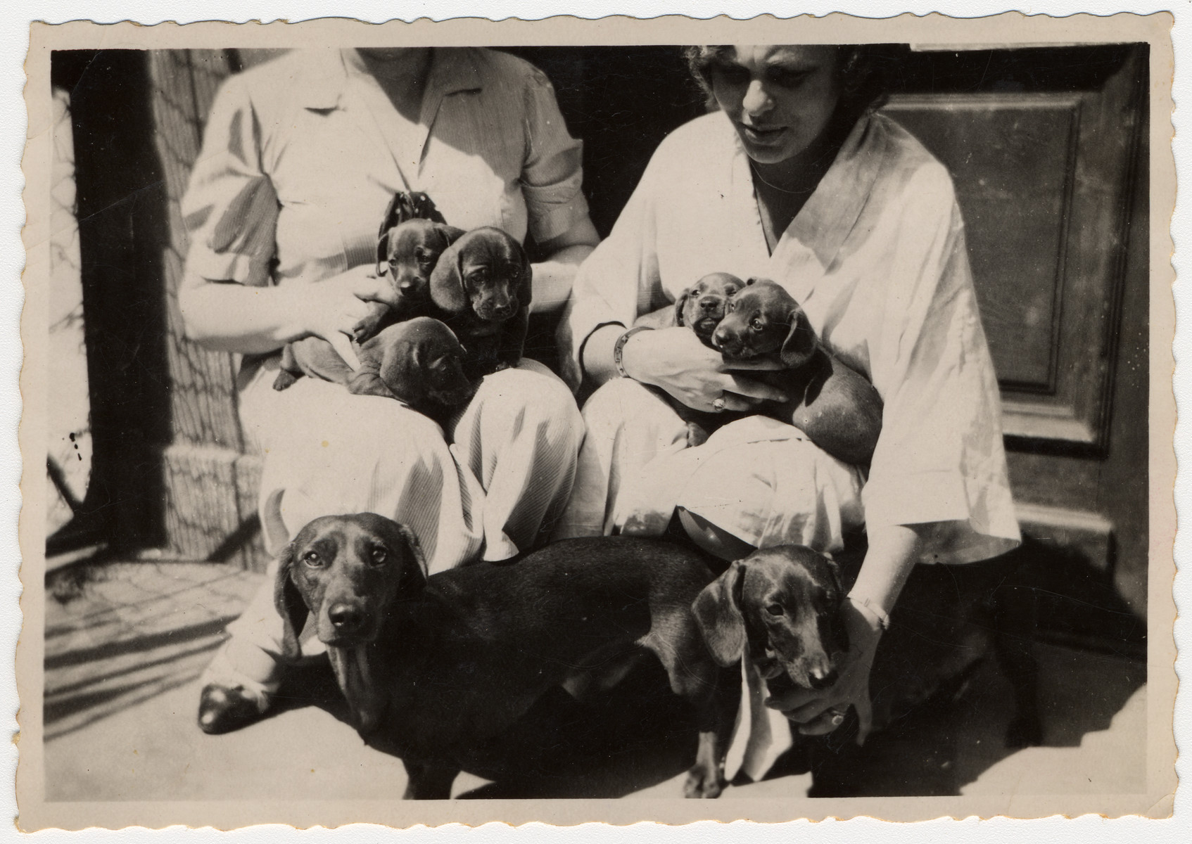 A Jewish woman in Lvov poses with a litter of puppies she is breeding.  Pictured is Lucie Lind Kitz.